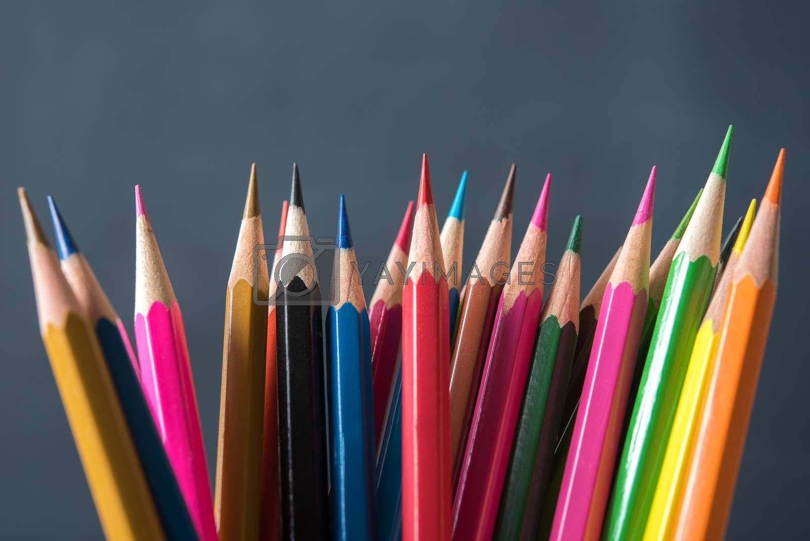 rows of multicolor pencil on black chalkboard background by Lerttanapunyaporn