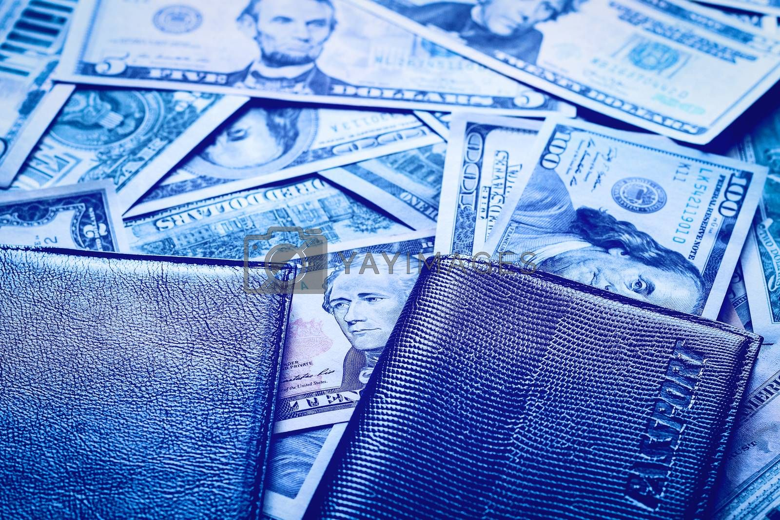 American dollar bills and passport. by Eugene Yemelyanov