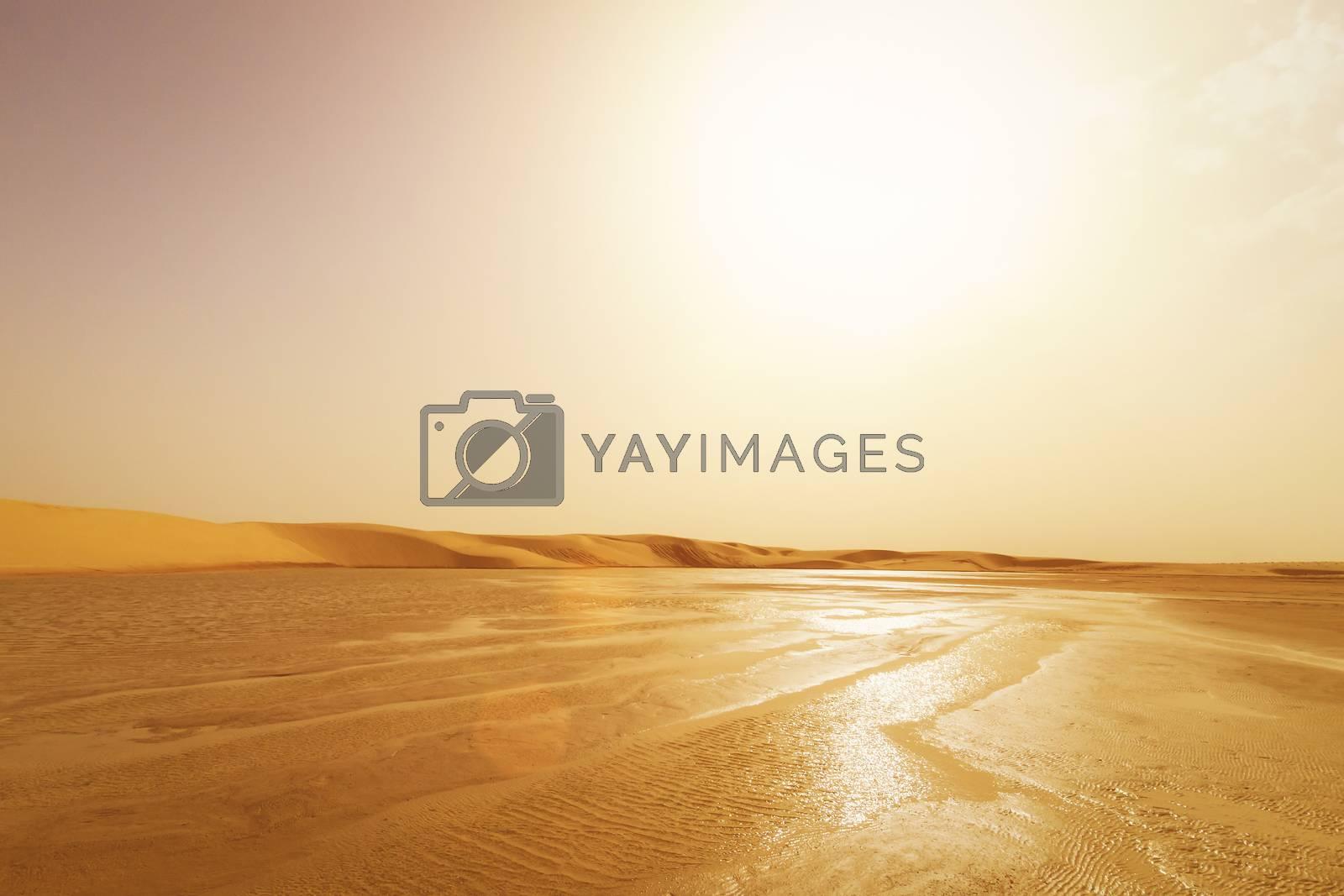 Scene of water landscape in the dunes of the Sahara Desert, Tato by Eugene Yemelyanov
