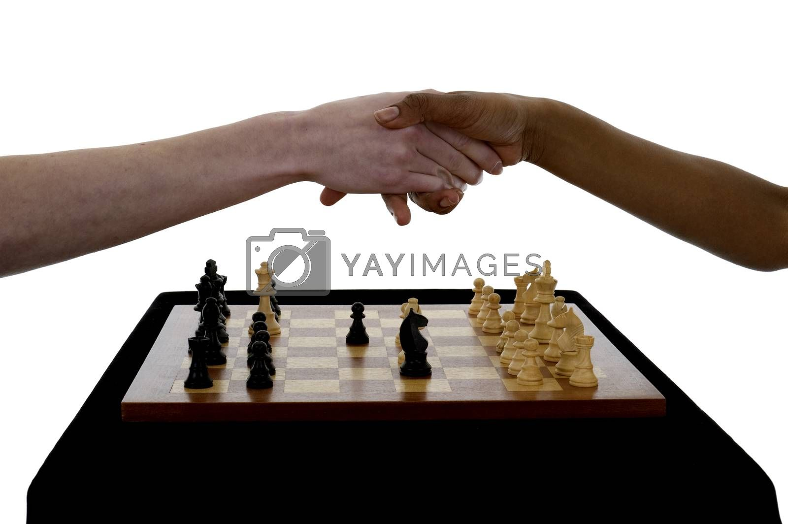 Two female chess players shaking hands