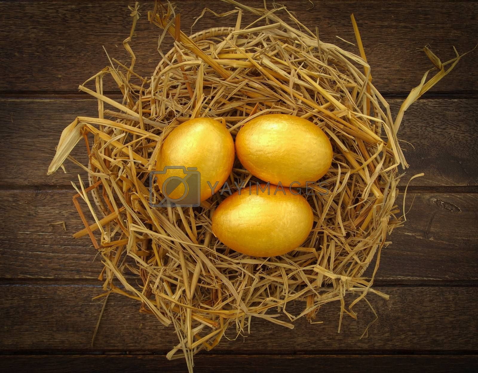 gold eggs by Phonlawat