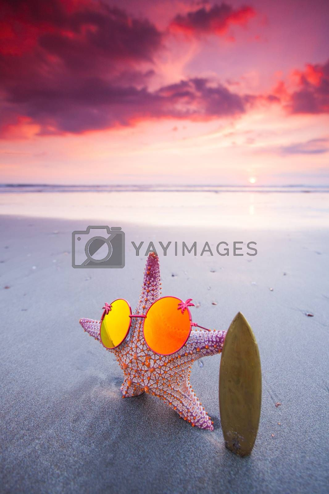 Starfish surfer in sunglasses on the beach and beautiful sunset on Bali