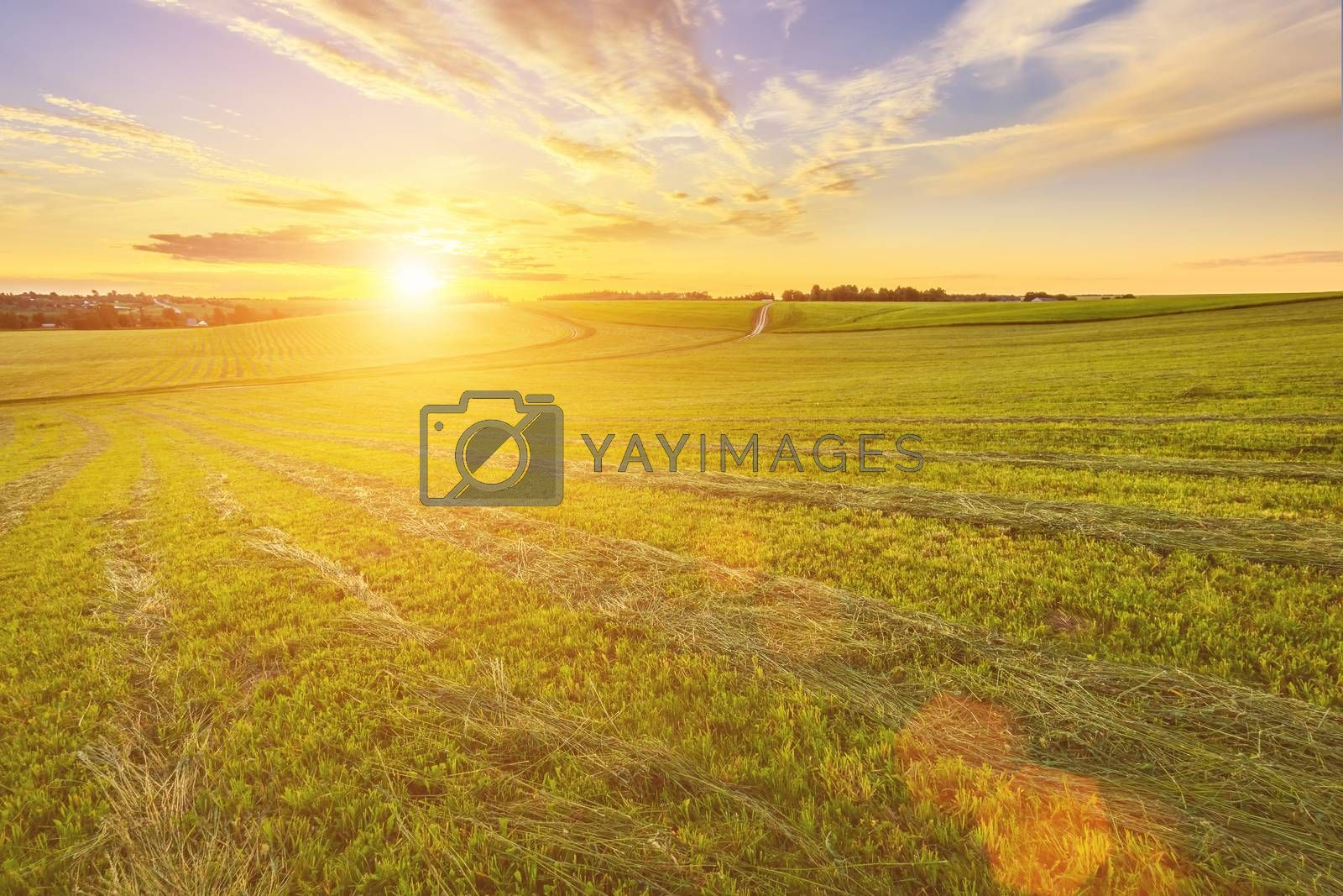 Scene of beautiful sunset at summer field. by Eugene Yemelyanov