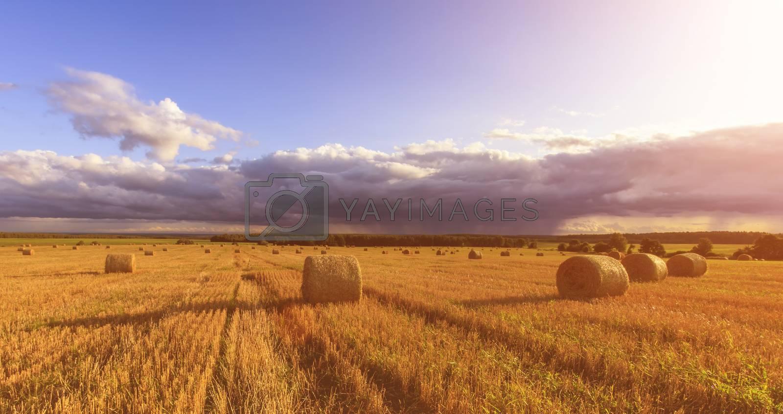 Field with a haystacks on sunset or sunrise. by Eugene Yemelyanov