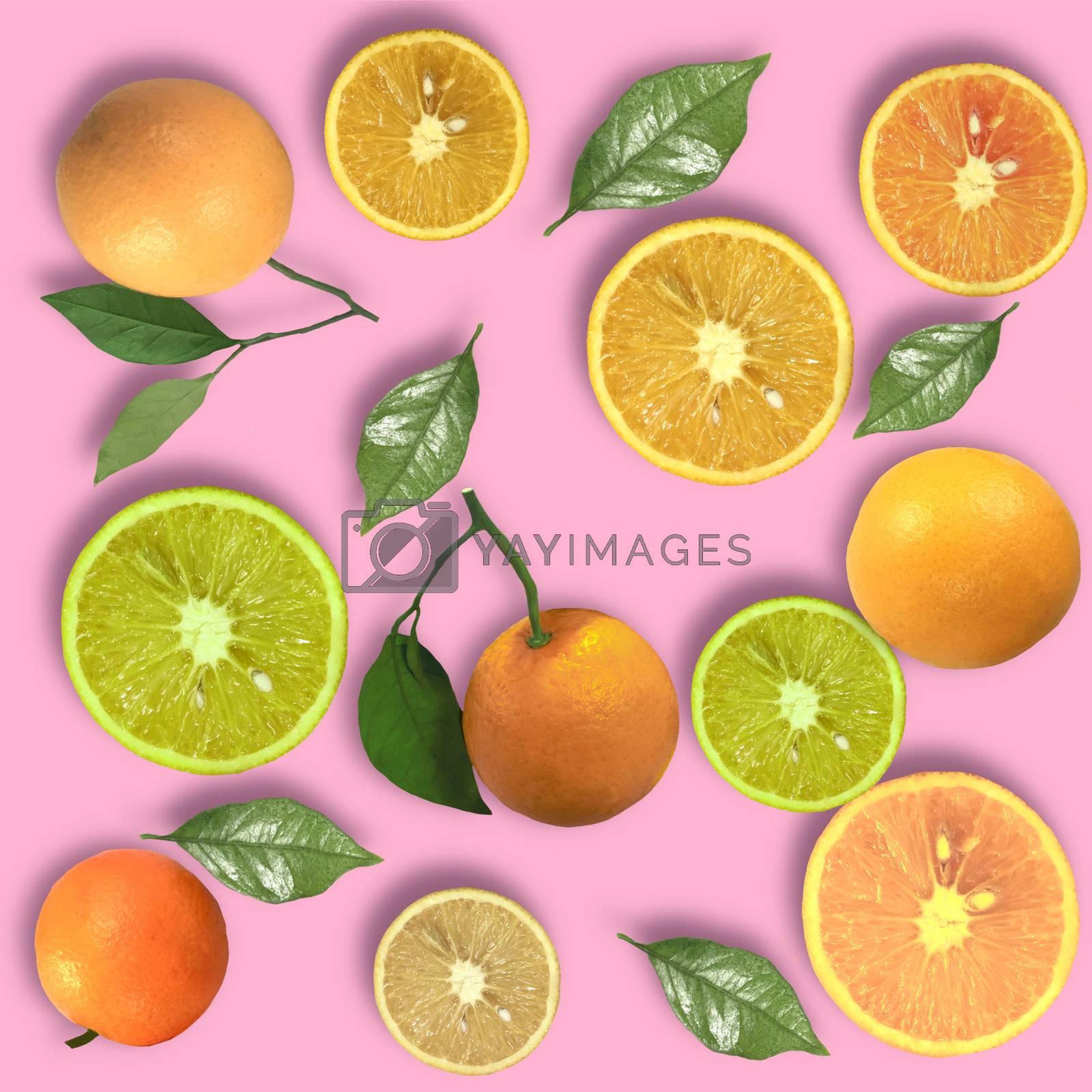 Colorful fruit background of fresh orange slices. Top view whole orange and half of orange.