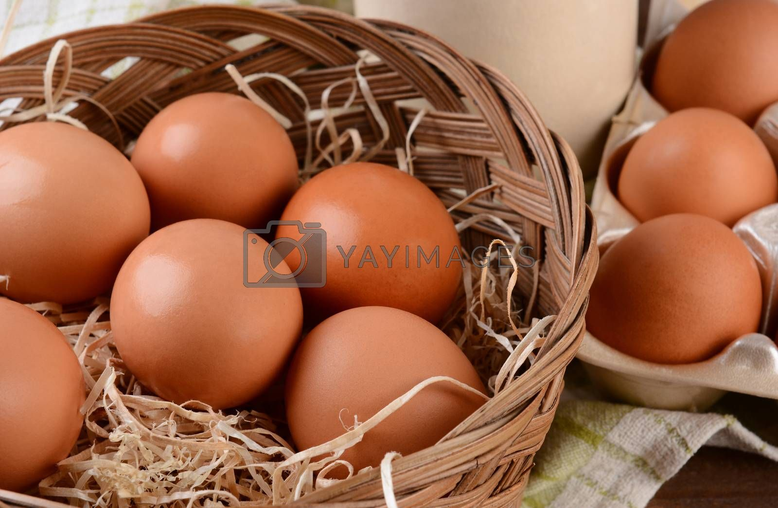 Basket of Brown Eggs by sCukrov
