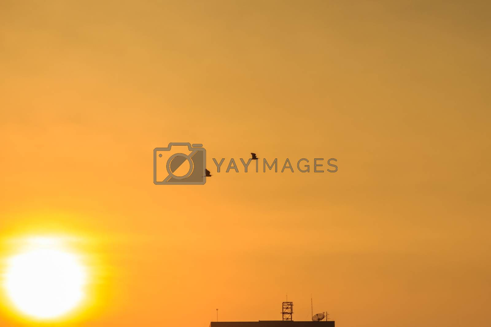 Orange sunset sky over building background. Yellow sky background during sunset.