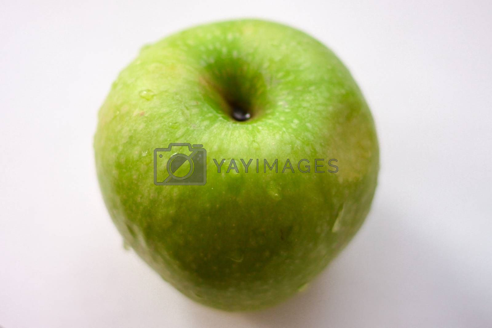 Green apple with drops of water on a white background by Evgeniia Vasileva