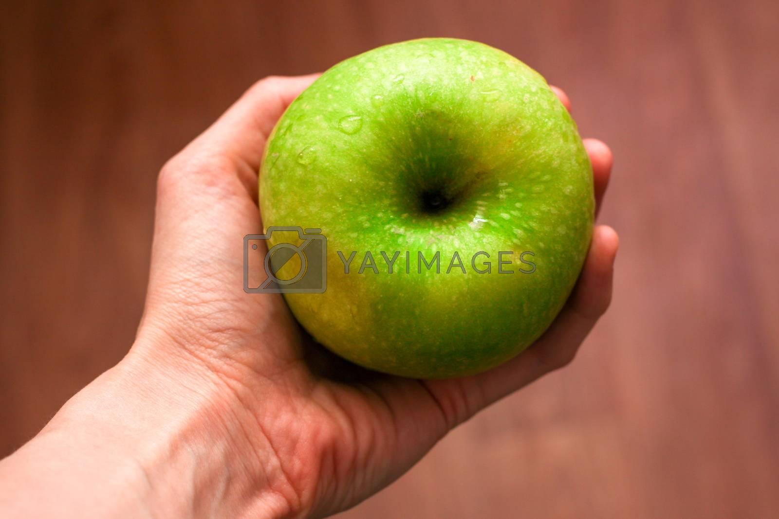 Green apple with drops of water in hand by Evgeniia Vasileva