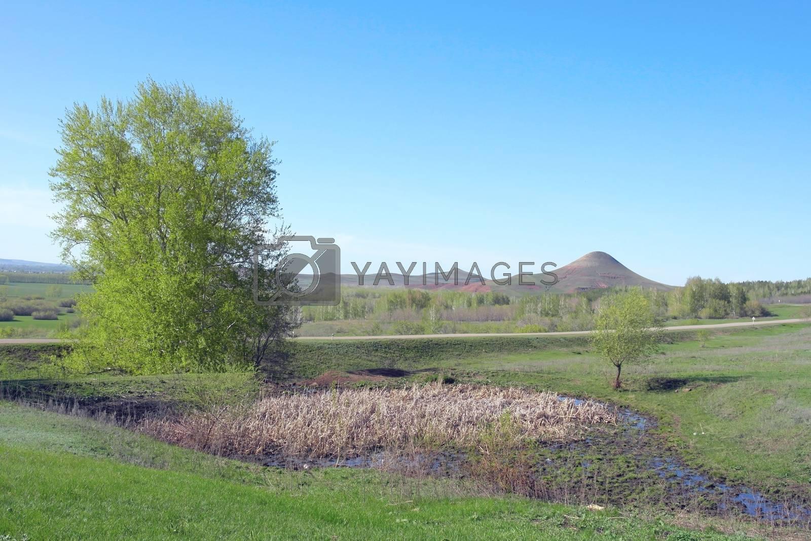 Beautiful summer landscape by sergpet