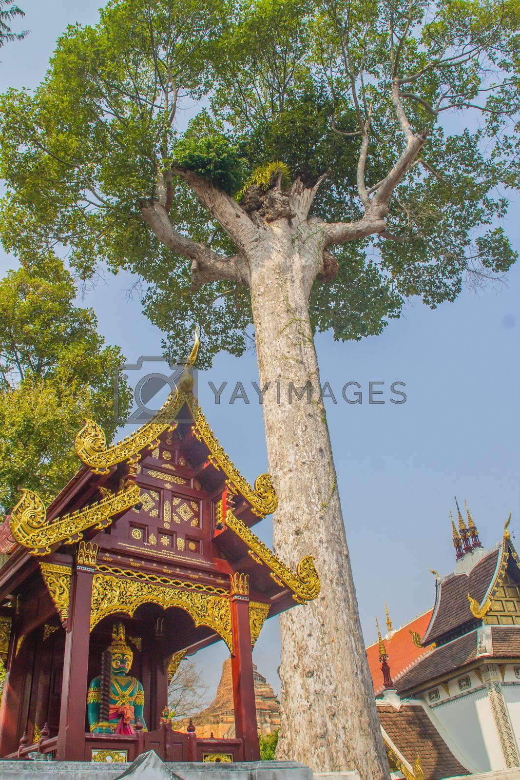 Beautiful exterior decoration outside the Chiang Mai City Pillar or Sao Inthakhin located at Wat Chedi Luang in Chiang Mai, Thailand.