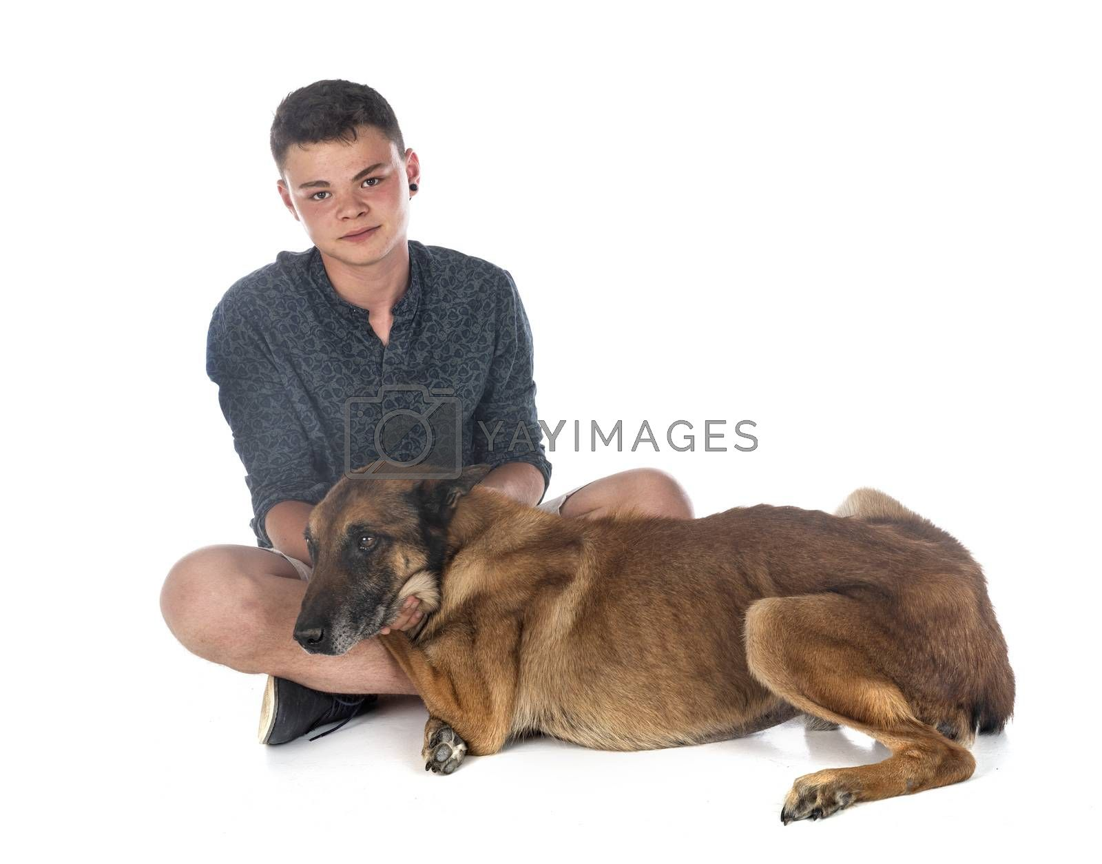 belgian shepherd and boy in front of white background