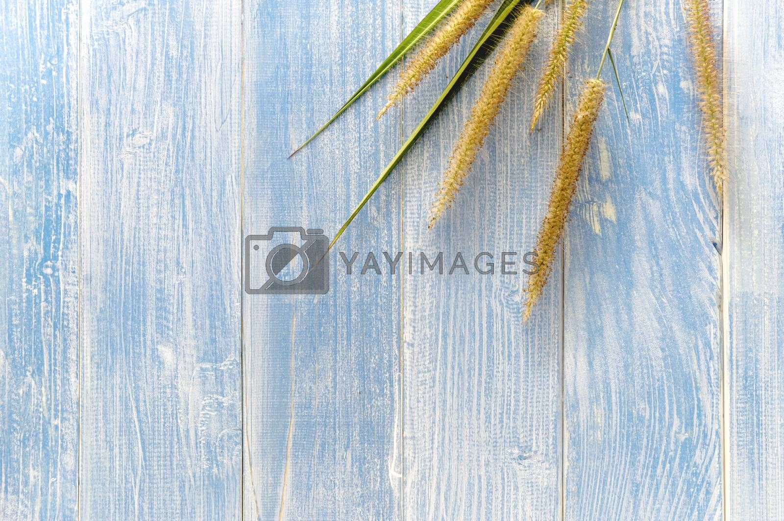 The grass flowers laid on a wooden floor have a blue wooden floor as background.