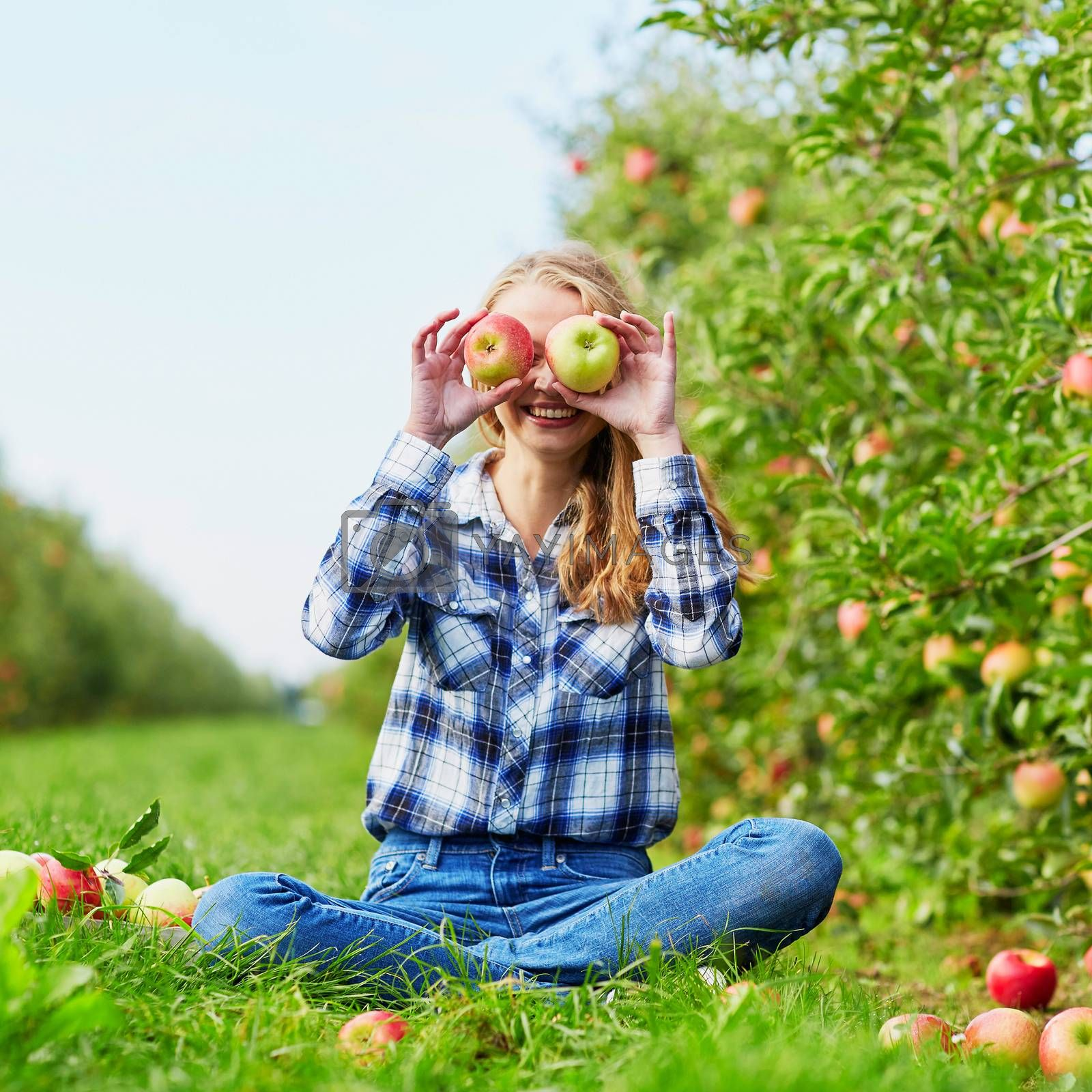 Woman holding crate with ripe red apples on farm. Autumn, harvest and gardening concept