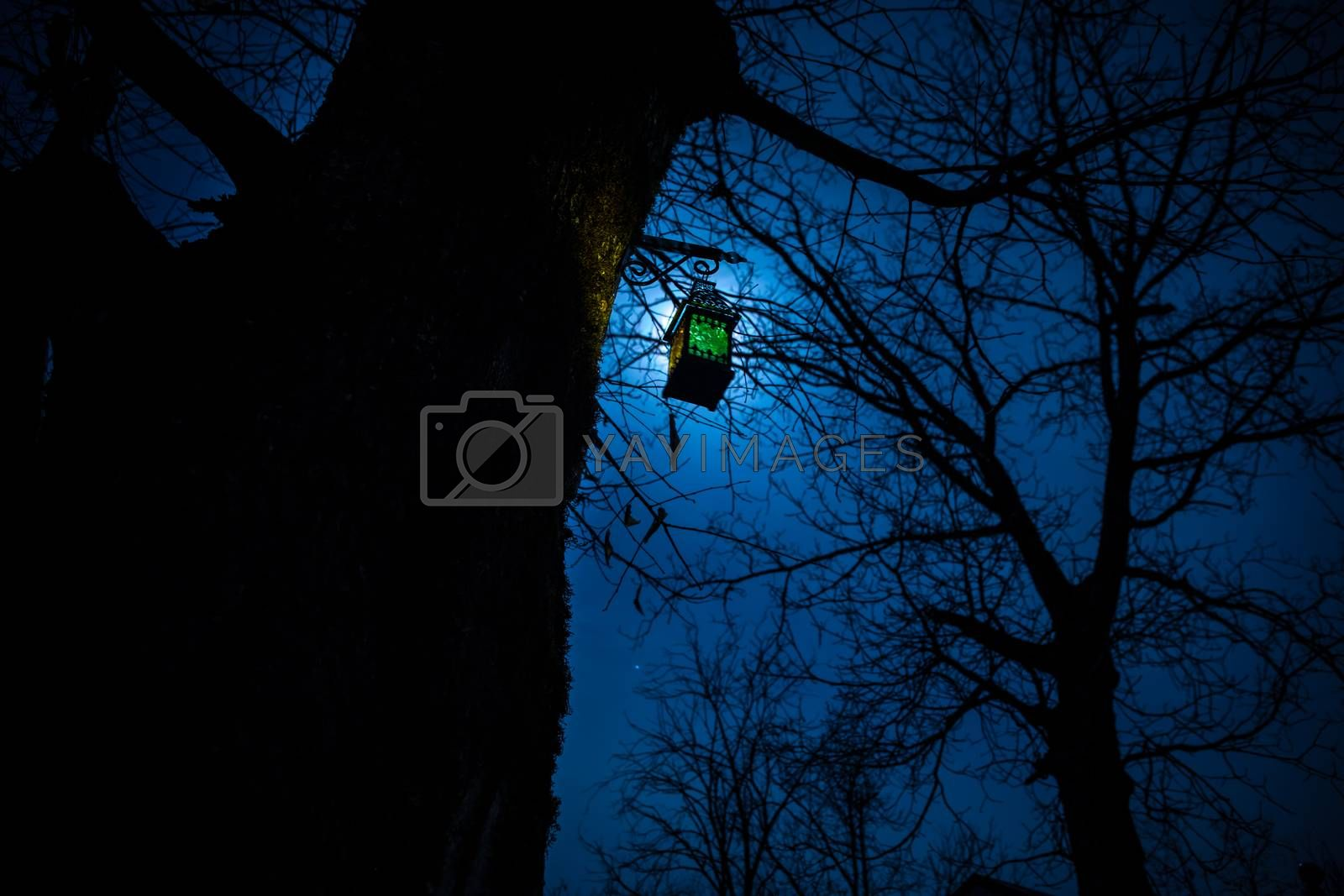 Beautiful colorful illuminated lamp in the garden in misty night. Retro style lantern at night outdoor. Selective focus