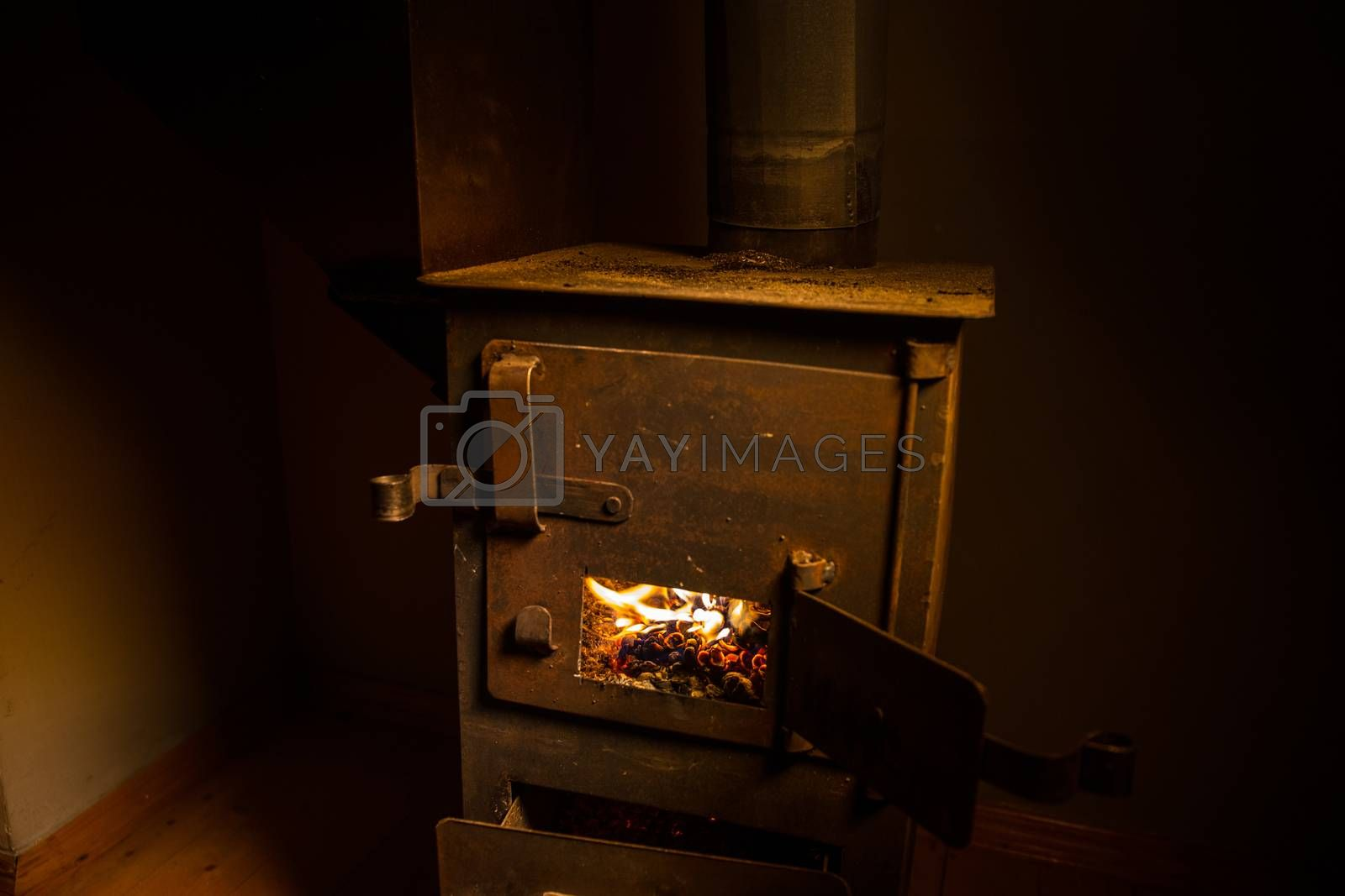 Fire burning in small black iron stove. Traditional Azerbaijani nut stove. Closeup photo with selective focus