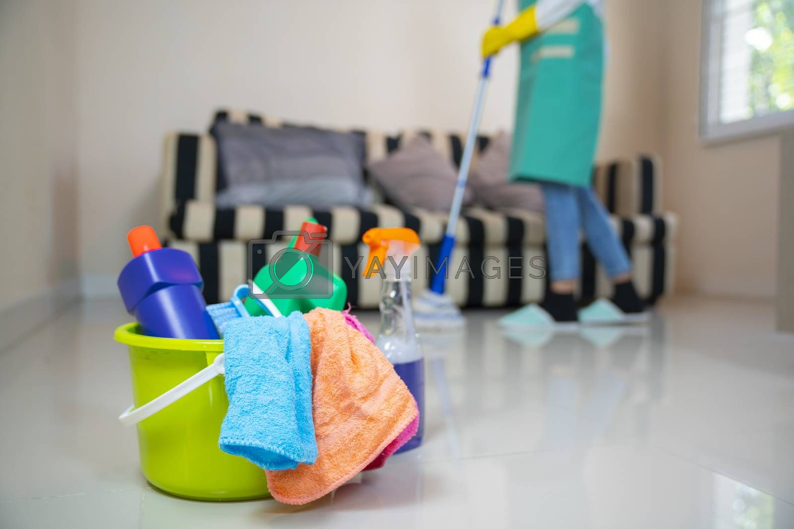 Cleaning service. Sponges, chemicals and mop