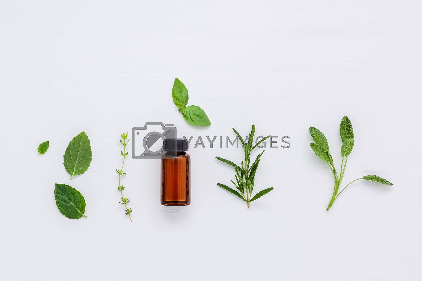 Bottle of essential oil with fresh herbs sage, rosemary, basil leaves ,thyme and peppermint setup with flat lay on white wooden background. Flat lay and copy space
