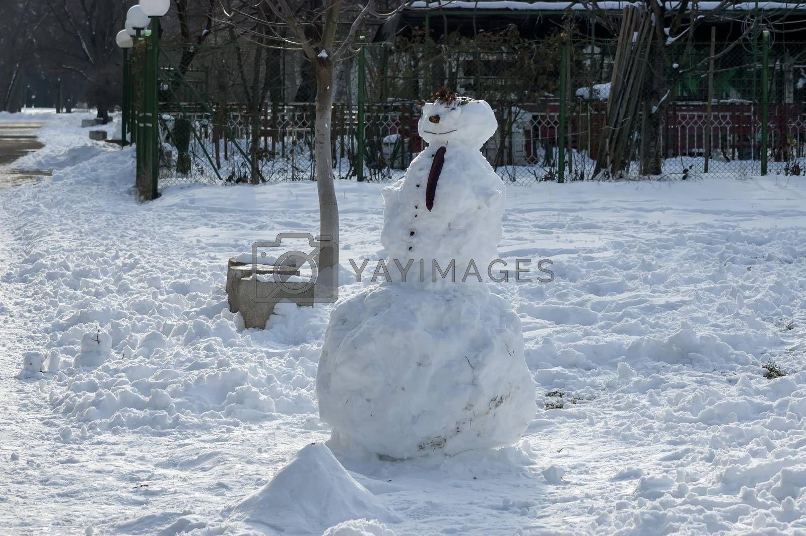 Winter scene with a snowman made with handy materials in the park by vili45