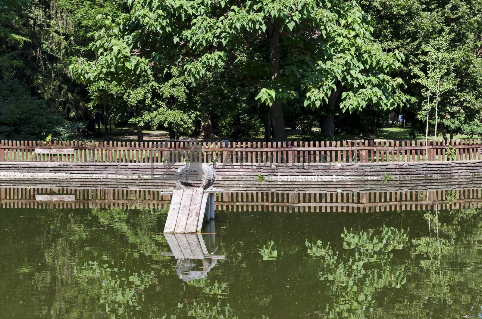 A nesting place for ducks built into the lake in the city garden, Sofia, Bulgaria