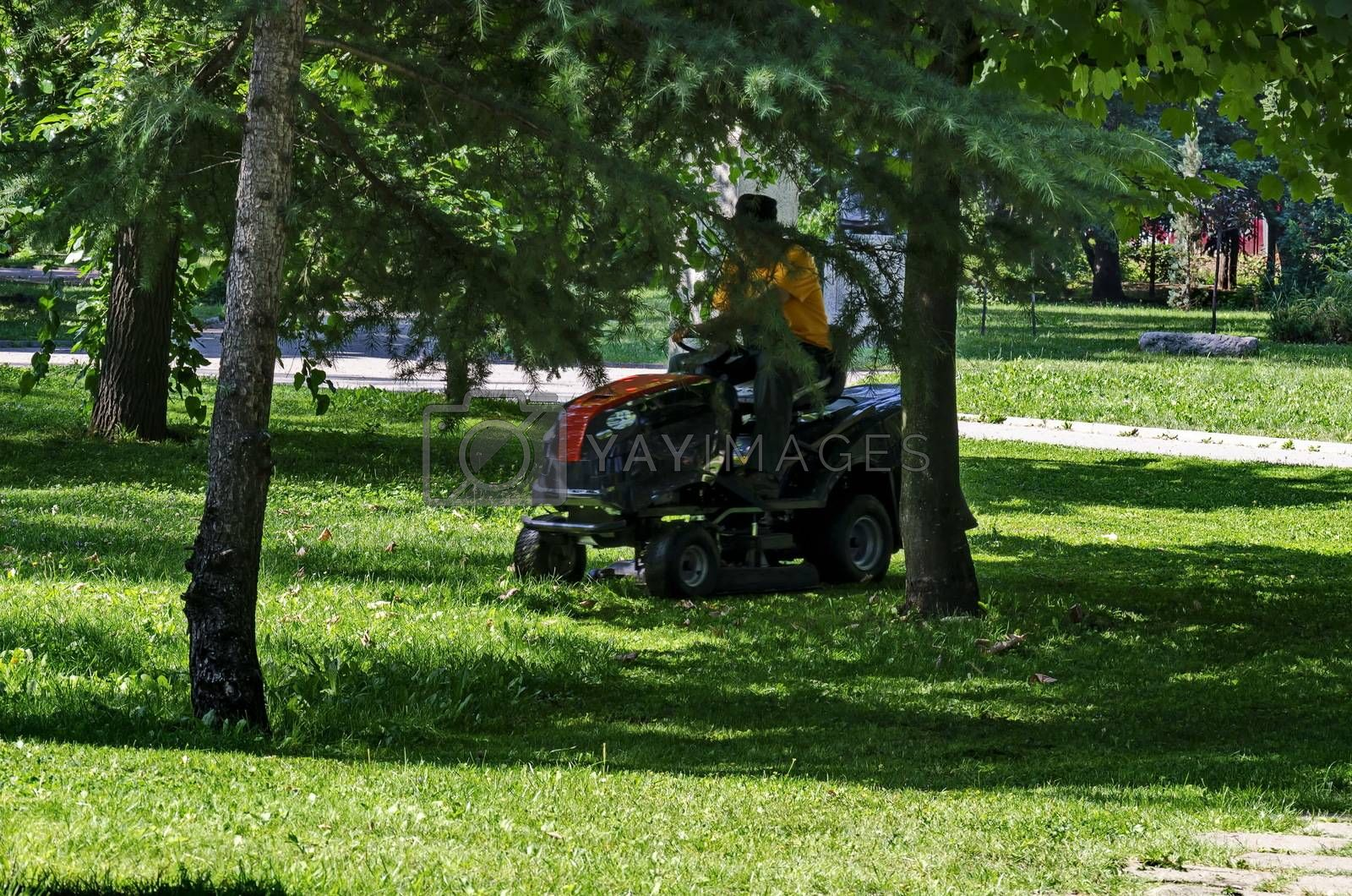 An experienced worker mows grass with a lawn tractor in the garden, Sofia, Bulgaria
