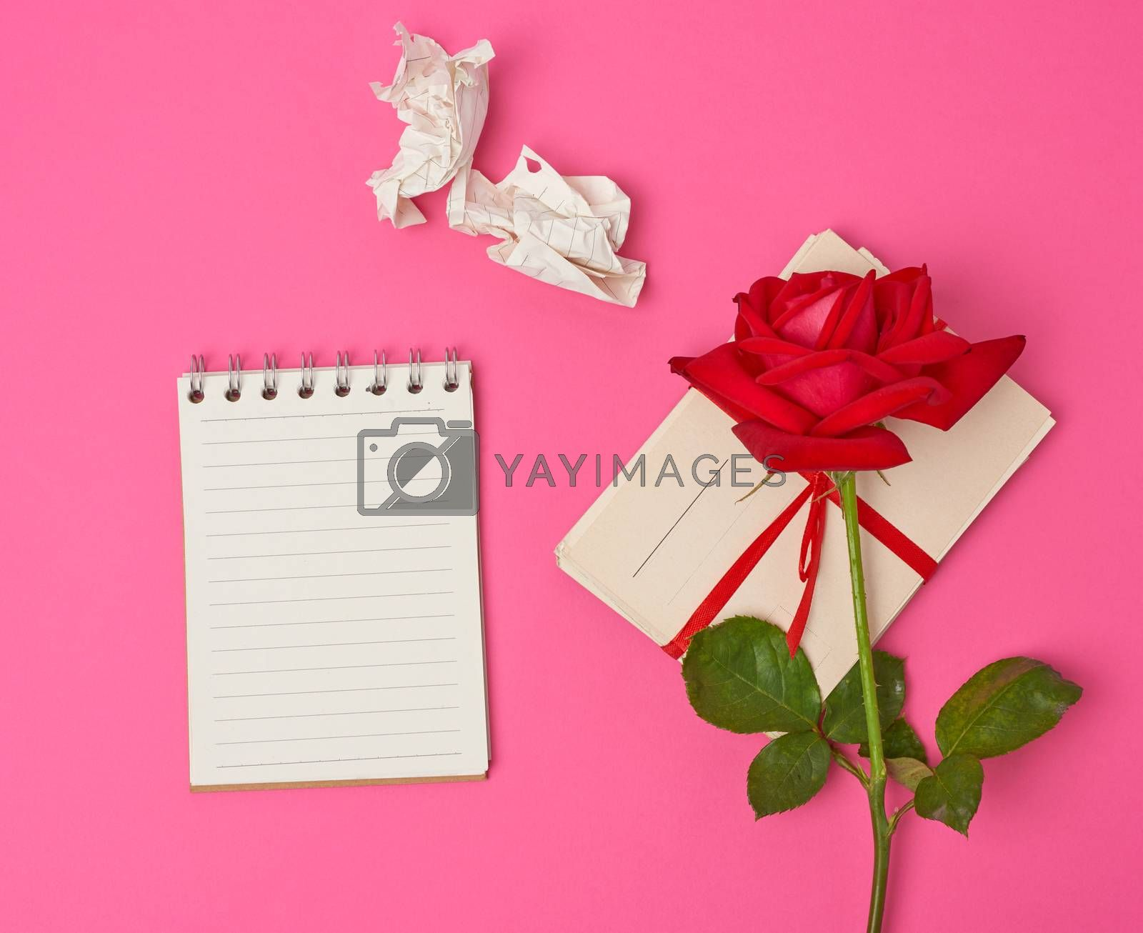 red blooming rose, a stack of vintage paper cards and paper notebook on a pink background, top view