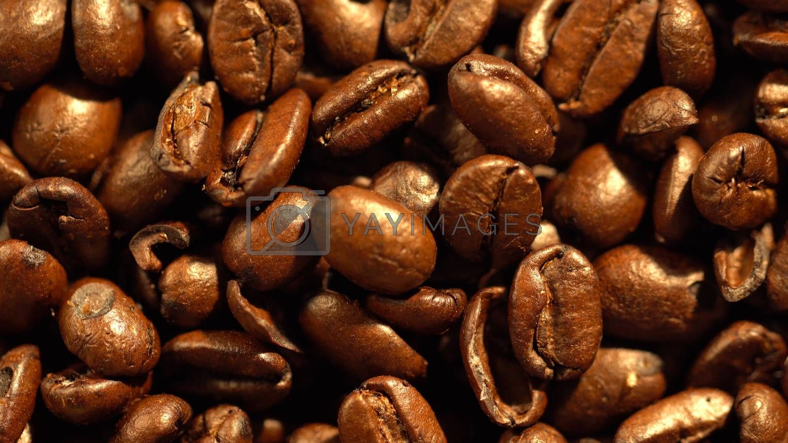 Close up of high quality of coffee beans on top view