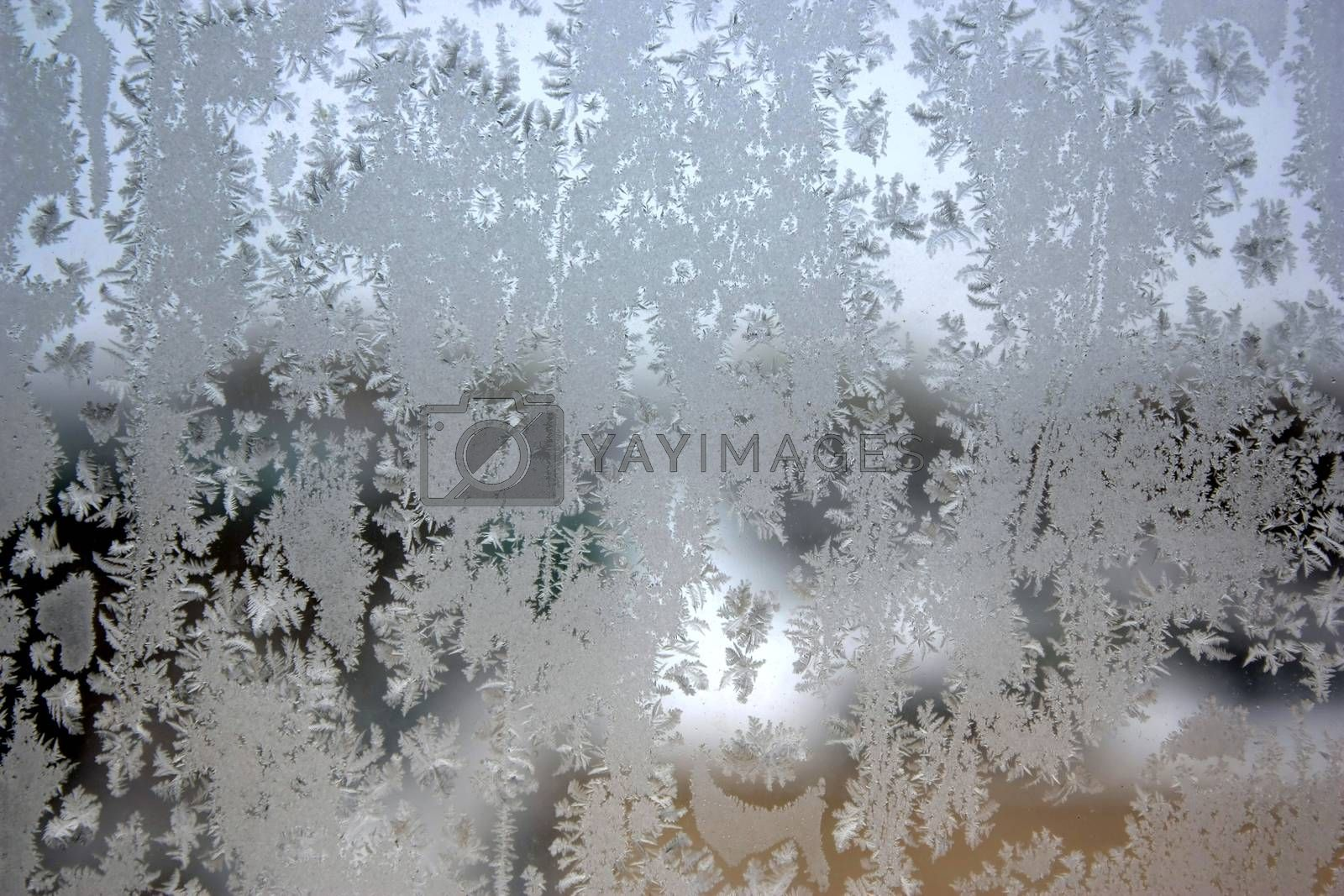 Abstract texture, pattern frost on the window, view macro