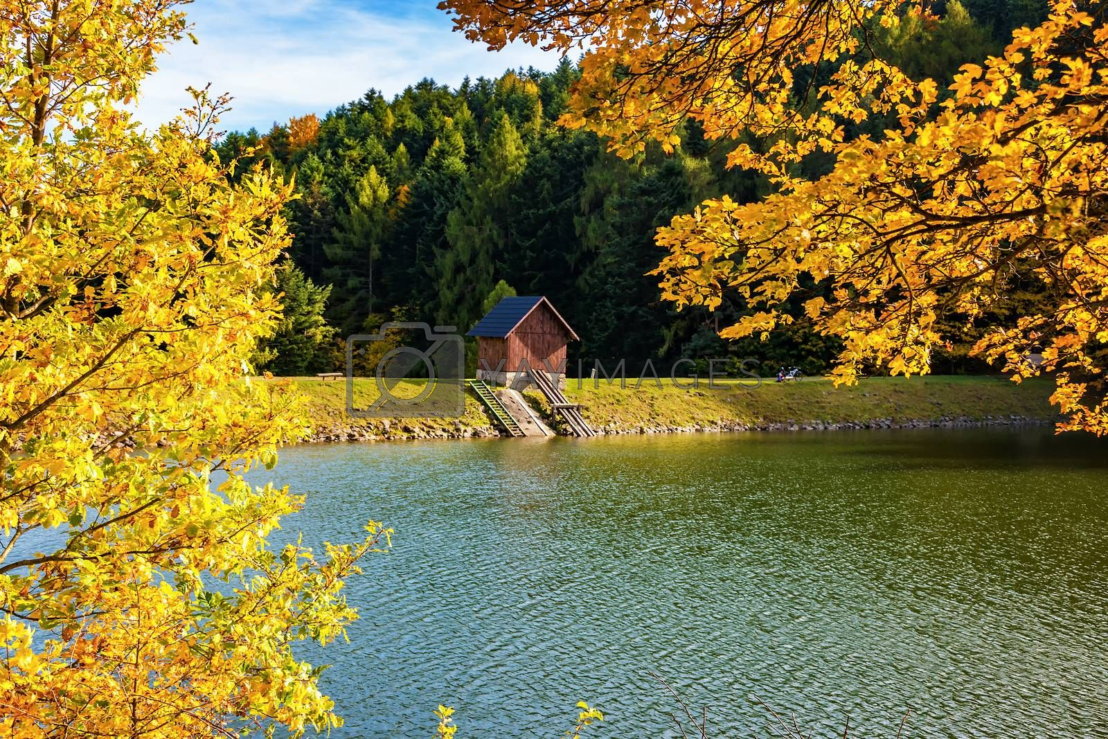 Beautiful view of small wooden house on bank of lake near forest during autumn
