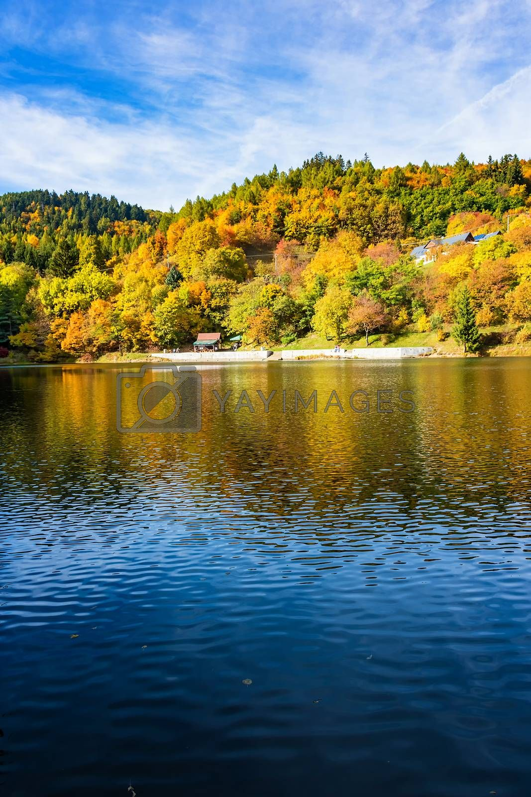Beautiful reflection of colorful trees in water of lake during autumn