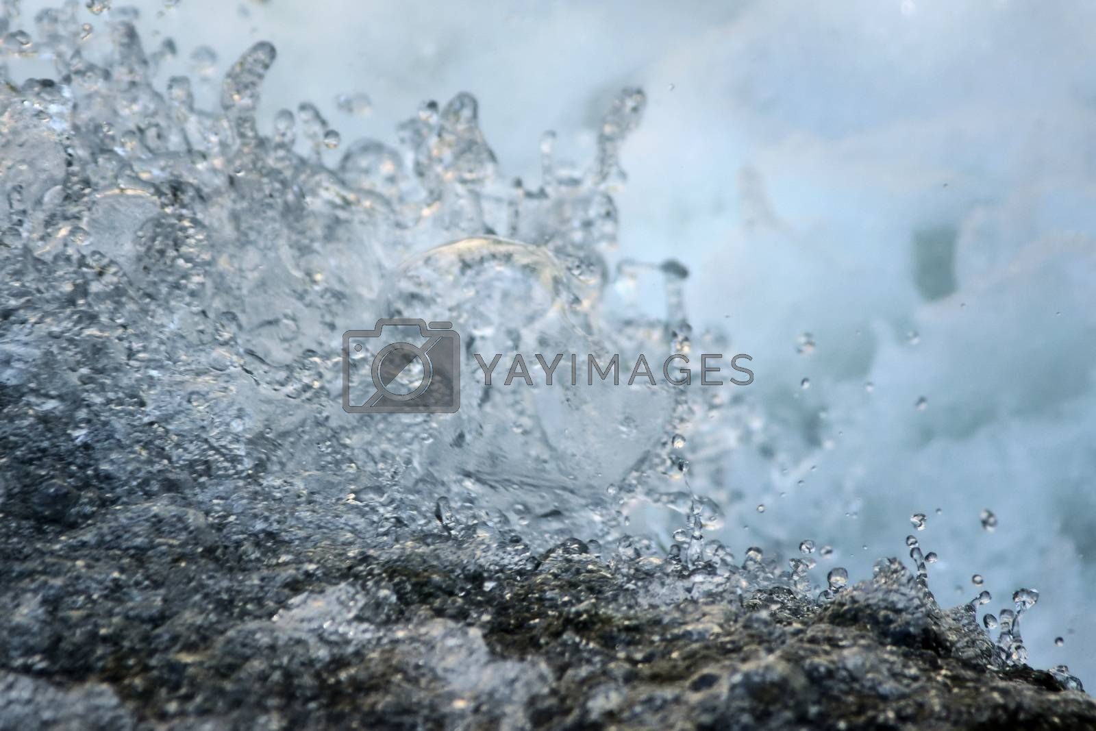 Royalty free image of Clear, fresh stream of water splattering in a natural creek. Environmental, water conservation concept. by hernan_hyper
