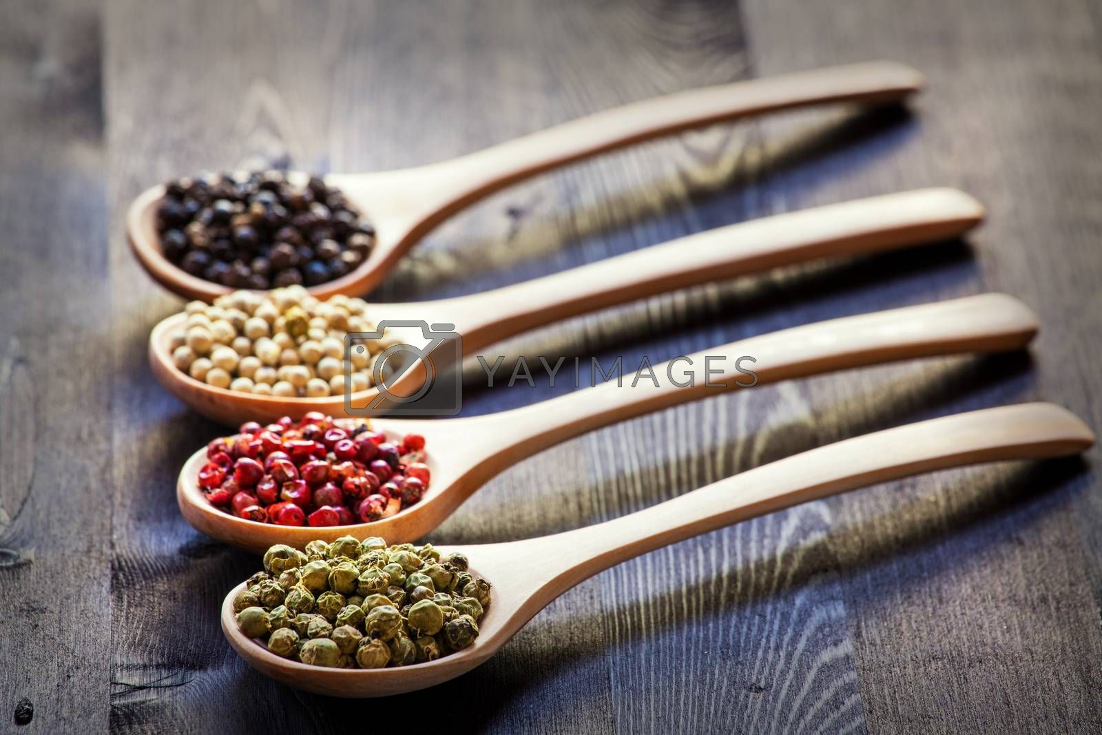 Royalty free image of Mixed peppercorns in a wooden spoon by IxMaster