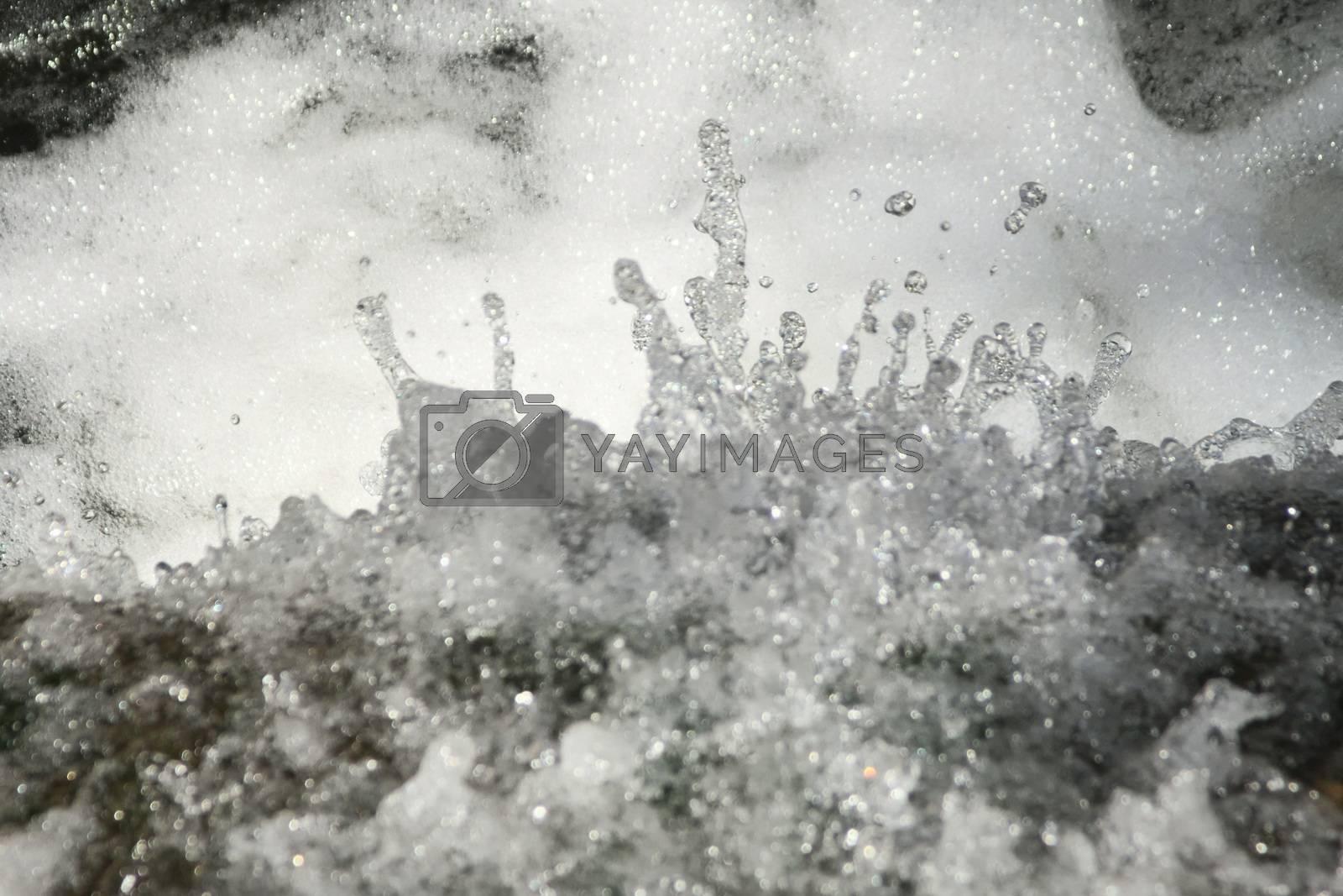 Royalty free image of Clear, fresh water splattering in a creek by hernan_hyper