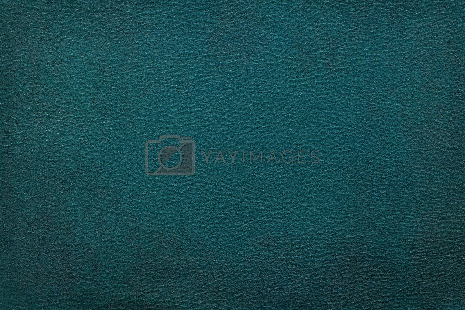 Royalty free image of Leather texture background by IxMaster