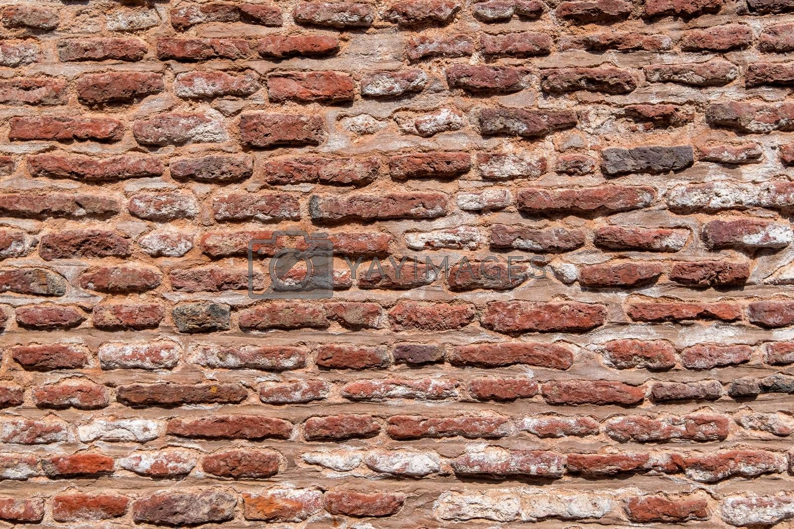Royalty free image of Red brick wall texture background. by Tanarch
