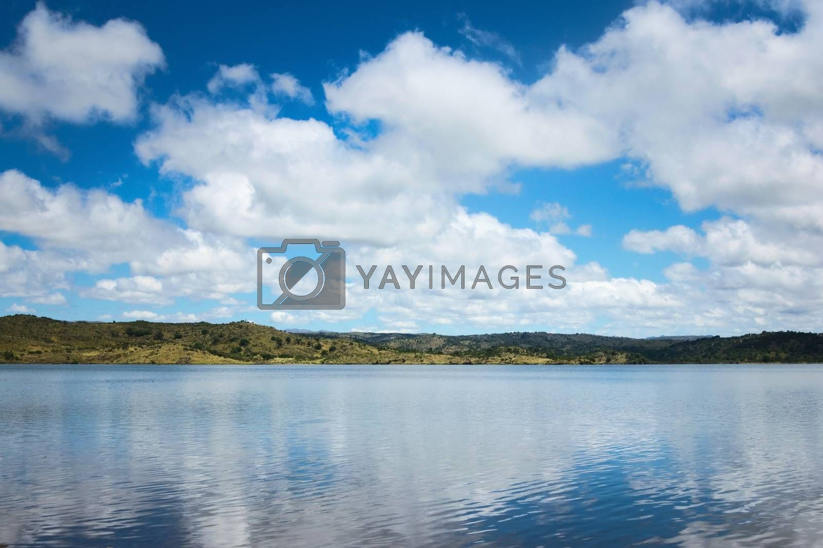 Royalty free image of Cumulus clouds reflected on the waters of a lake by hernan_hyper
