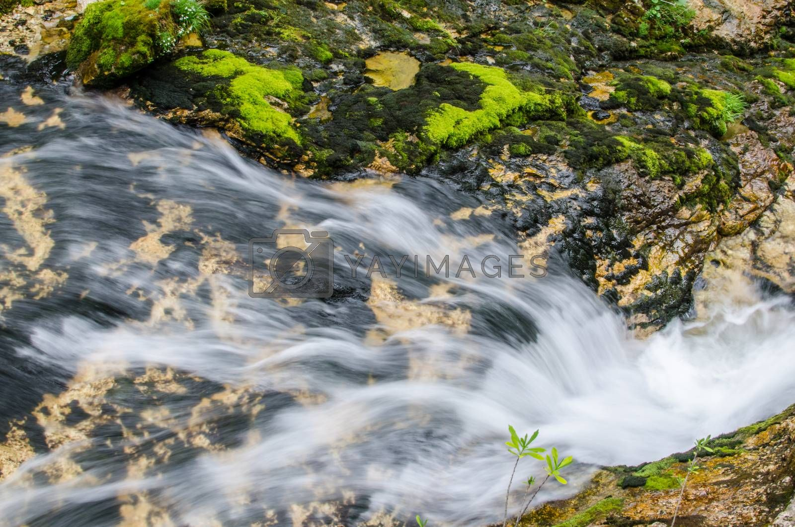 Royalty free image of fast flowing water from a stream by thomaseder