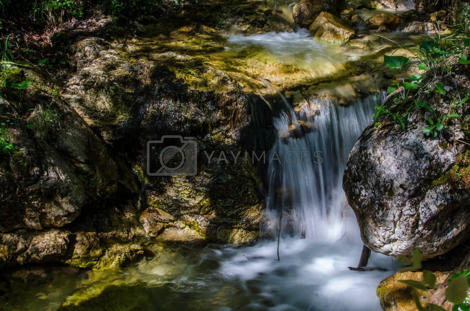 Royalty free image of small stream with shadow by thomaseder