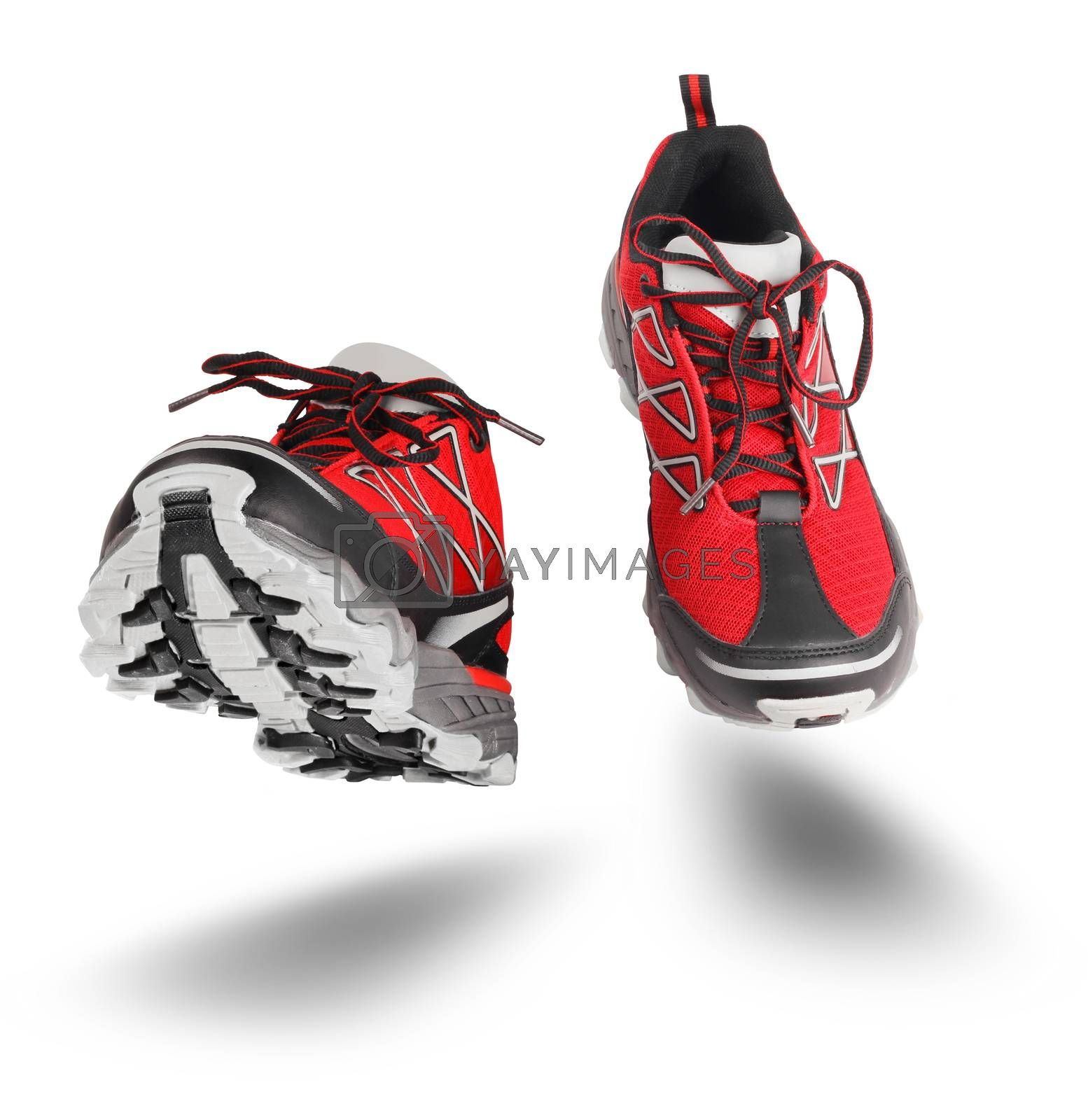 Red running sport shoes seen front, isolated on white background