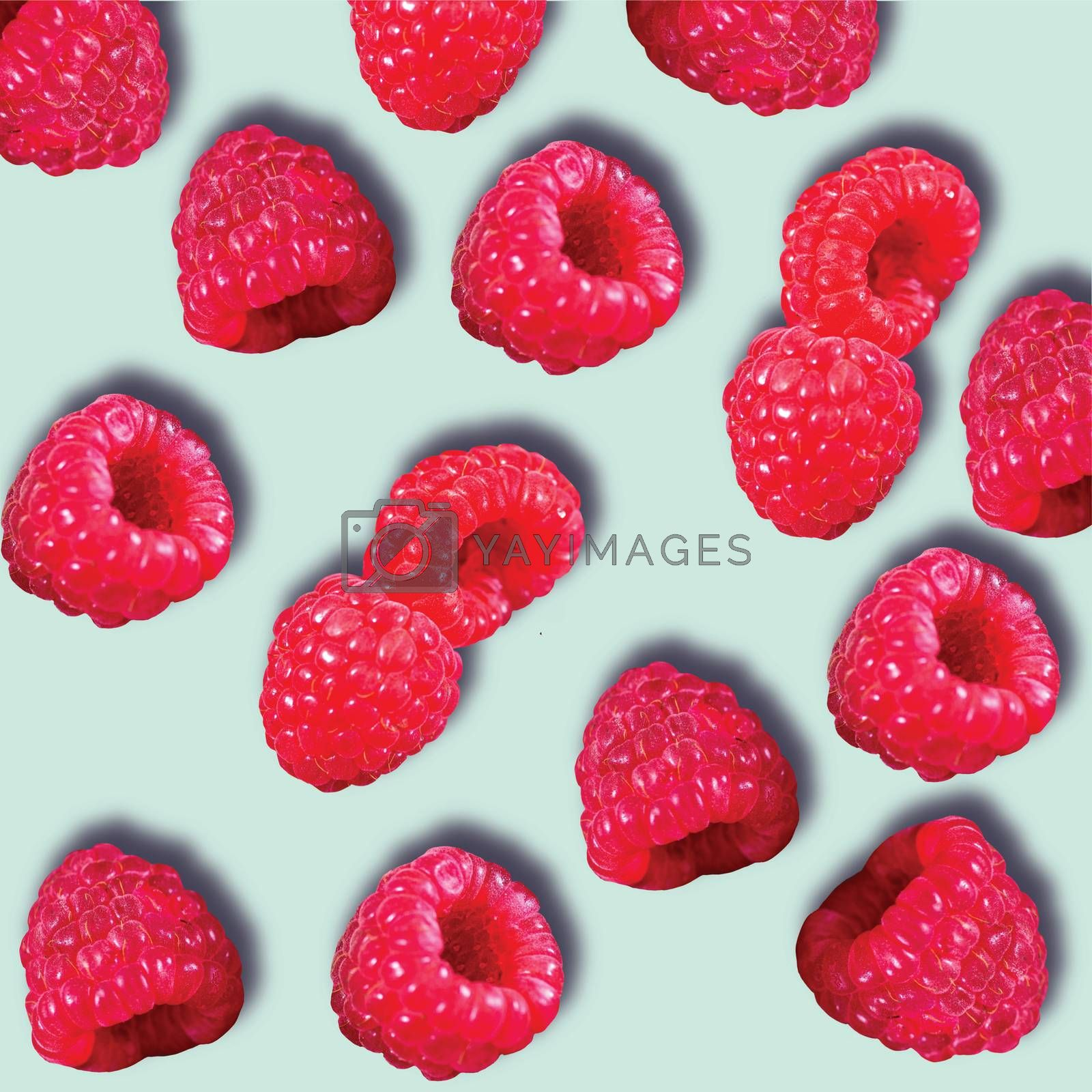 Pattern of Raspberries sweet organic juicy berries on blue background. Flat lay, top view.