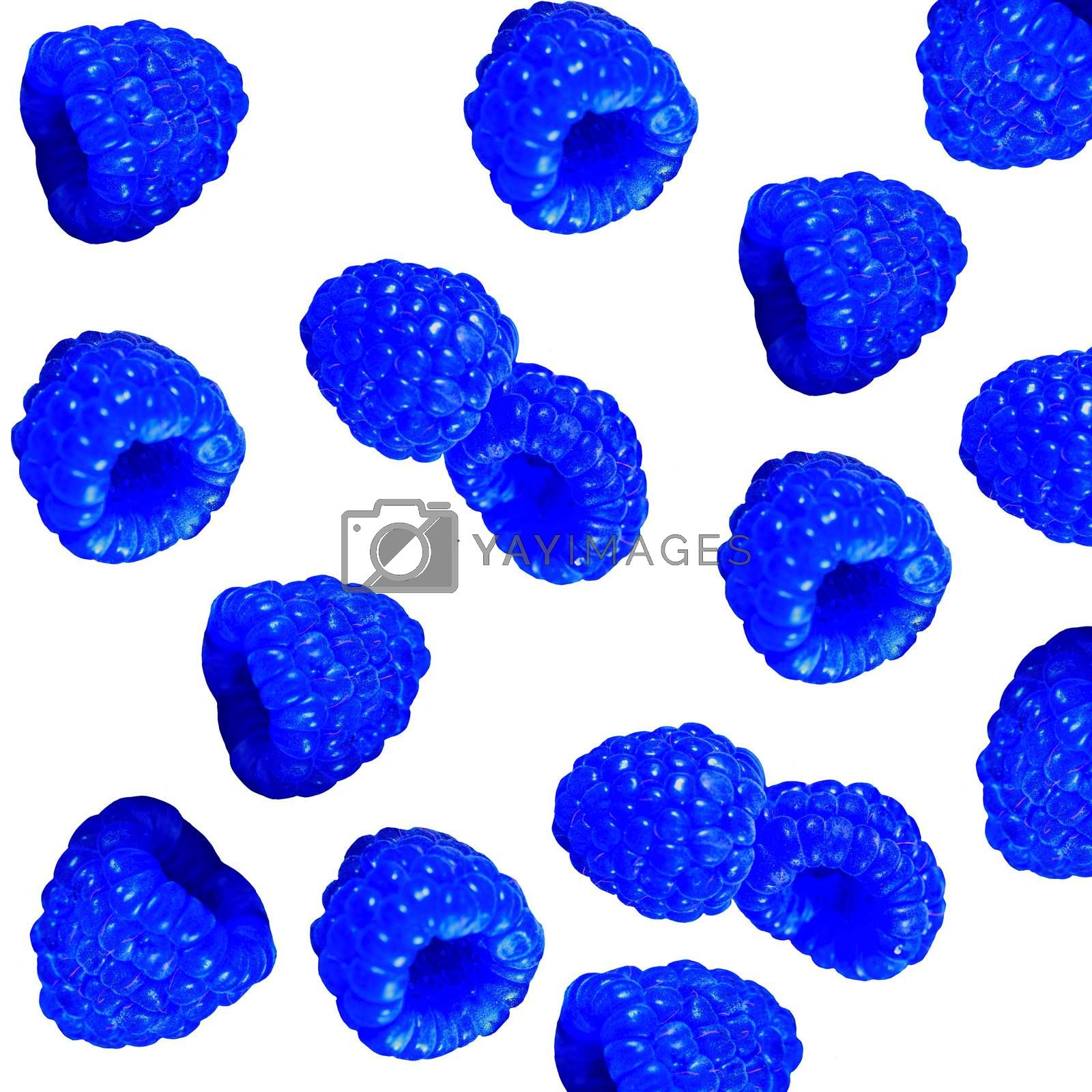 Fresh sweet blue raspberries texture background. by Margolana