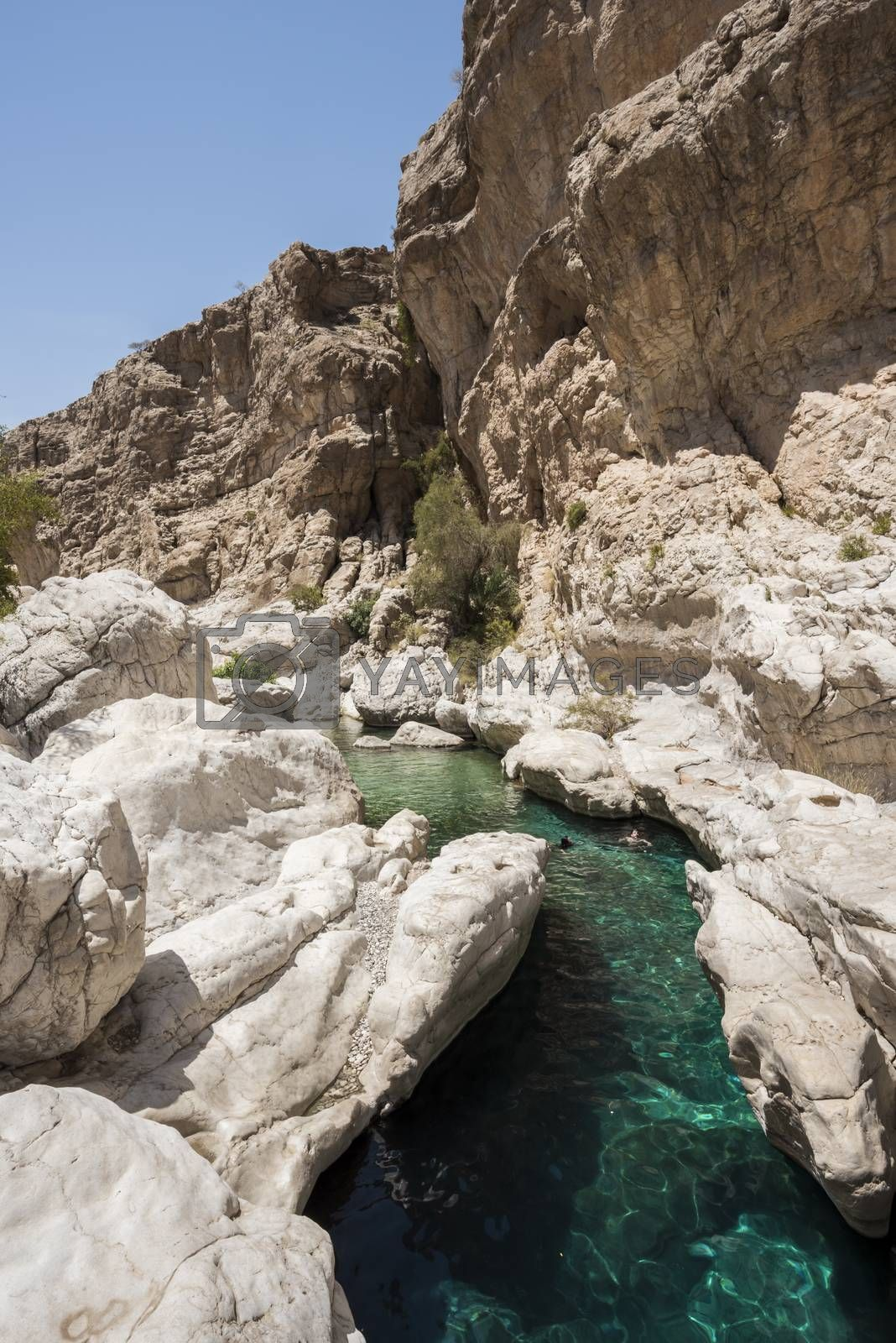 People swimming in the clear turquoise river water of Wadi Bani Khalid, sultanate of Oman, Middle East