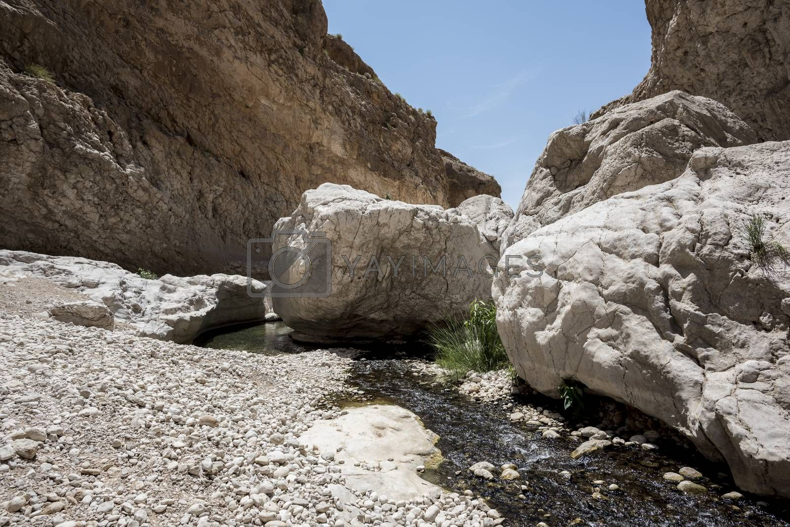 Large stones on the river going thru the canyon of Wadi Bani Khalid, Sultanate of Oman. This is one of the most visited place of the country
