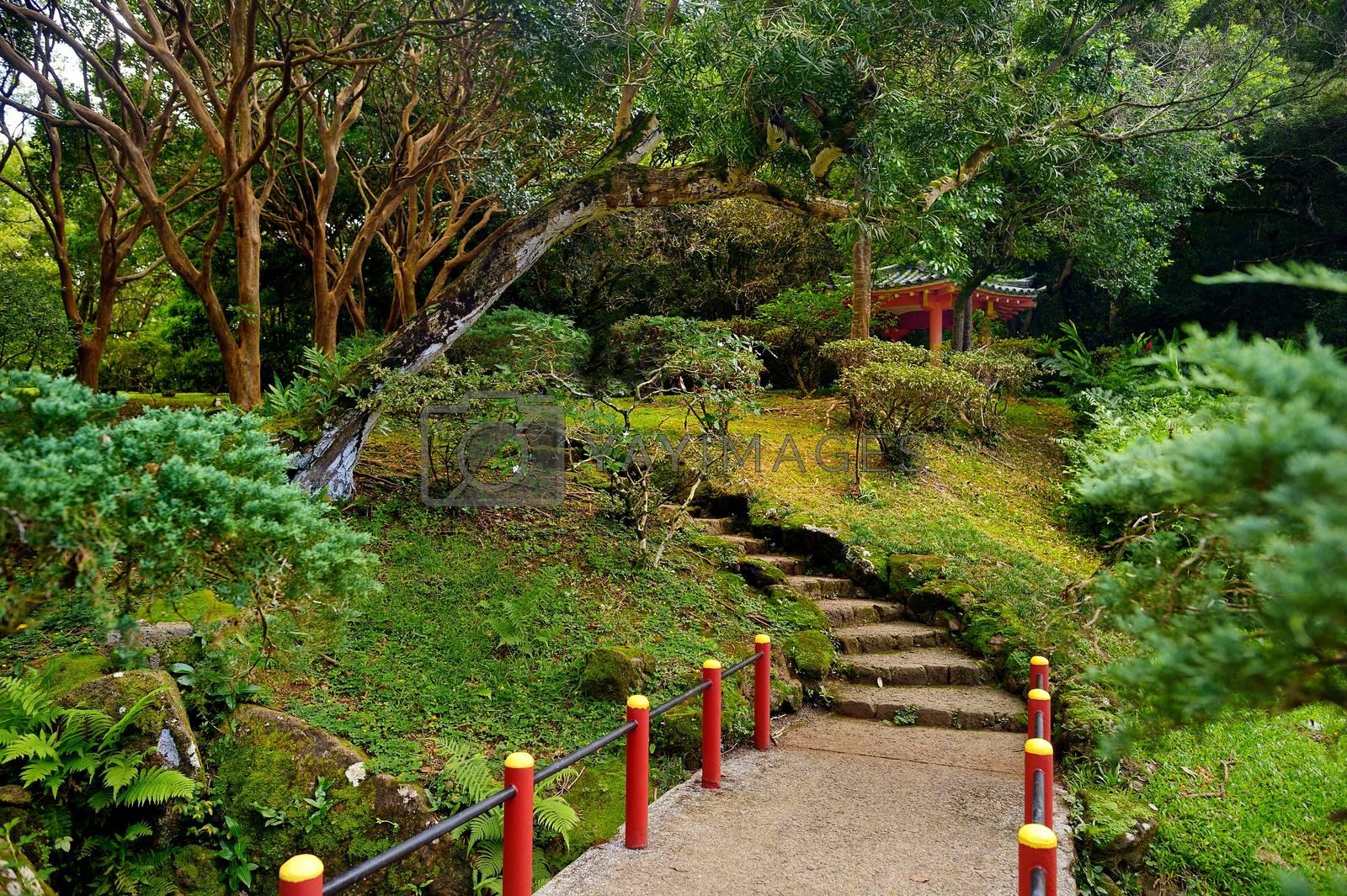 Park near the Byodo-in buddhist temple on Oahu, Hawaii