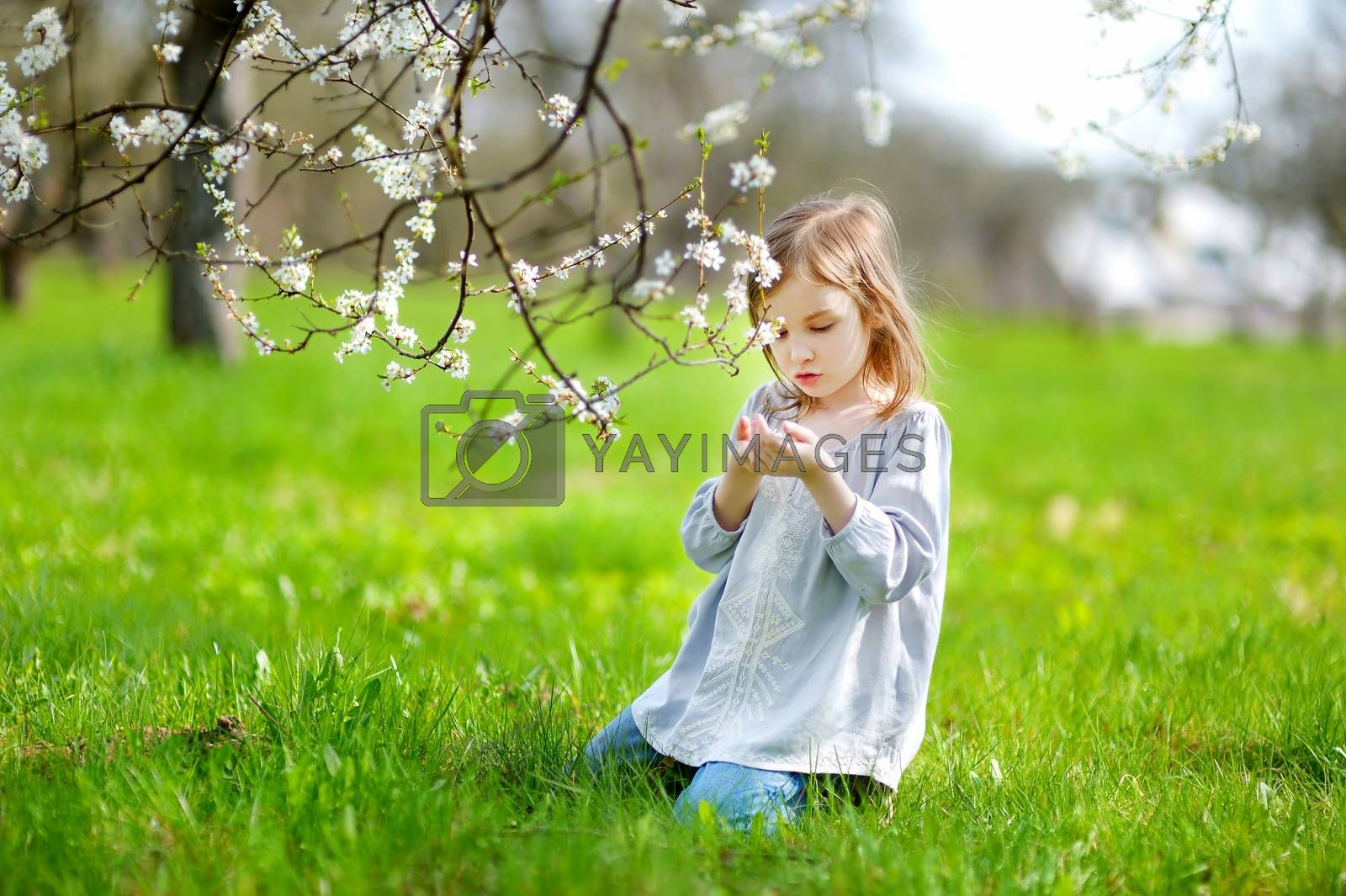 Adorable little girl in blooming cherry garden on beautiful spring day