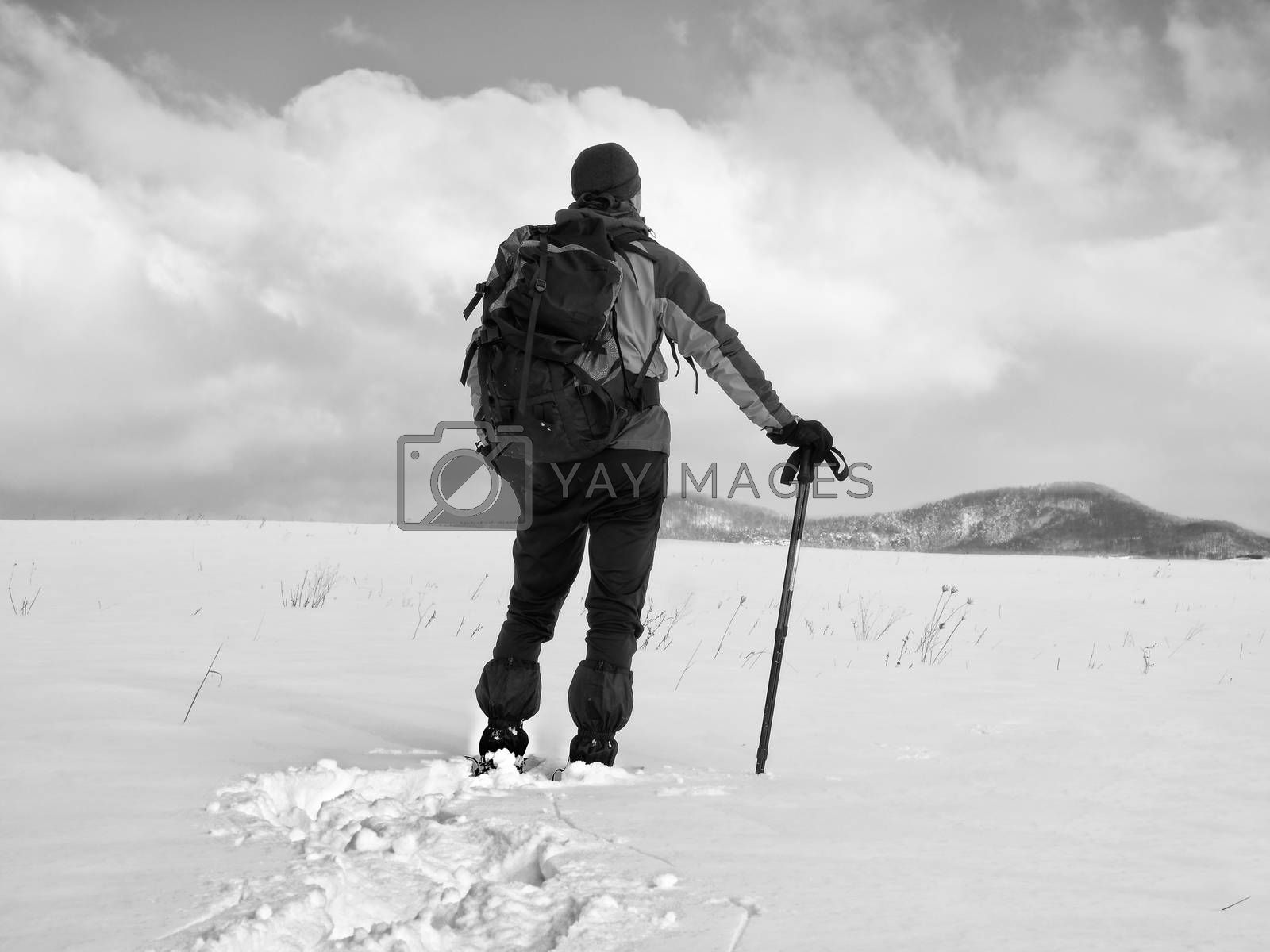 Hiker with backpack snowshoeing  in deep drift. Man with snowshoes walk in hill. Hiker in green gray winter jacket and black trekking trousers snowshoeing in powder snow.