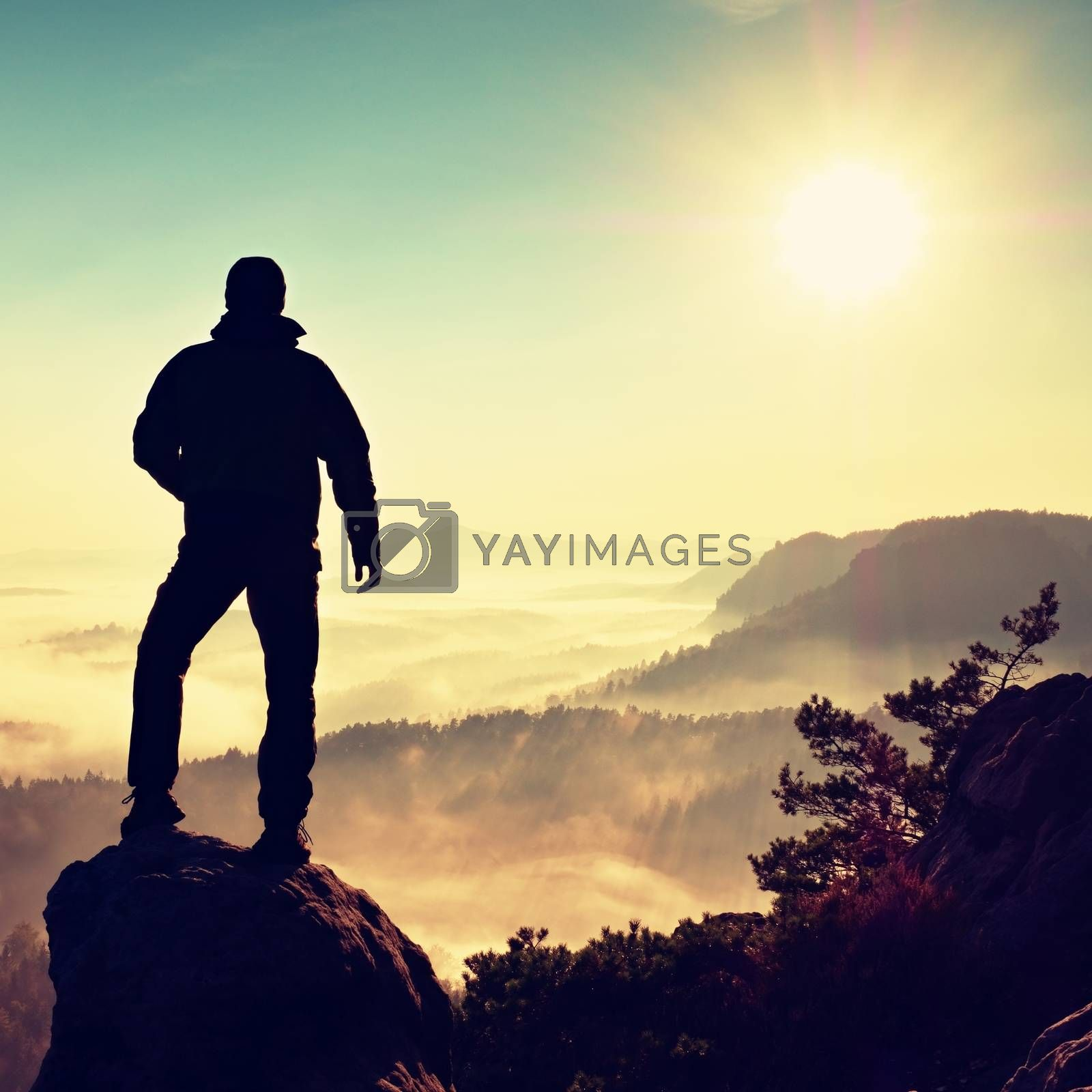 Hiker climbed on peak of rock above valley. Man  watch over misty and foggy morning valley to bright morning Sun.