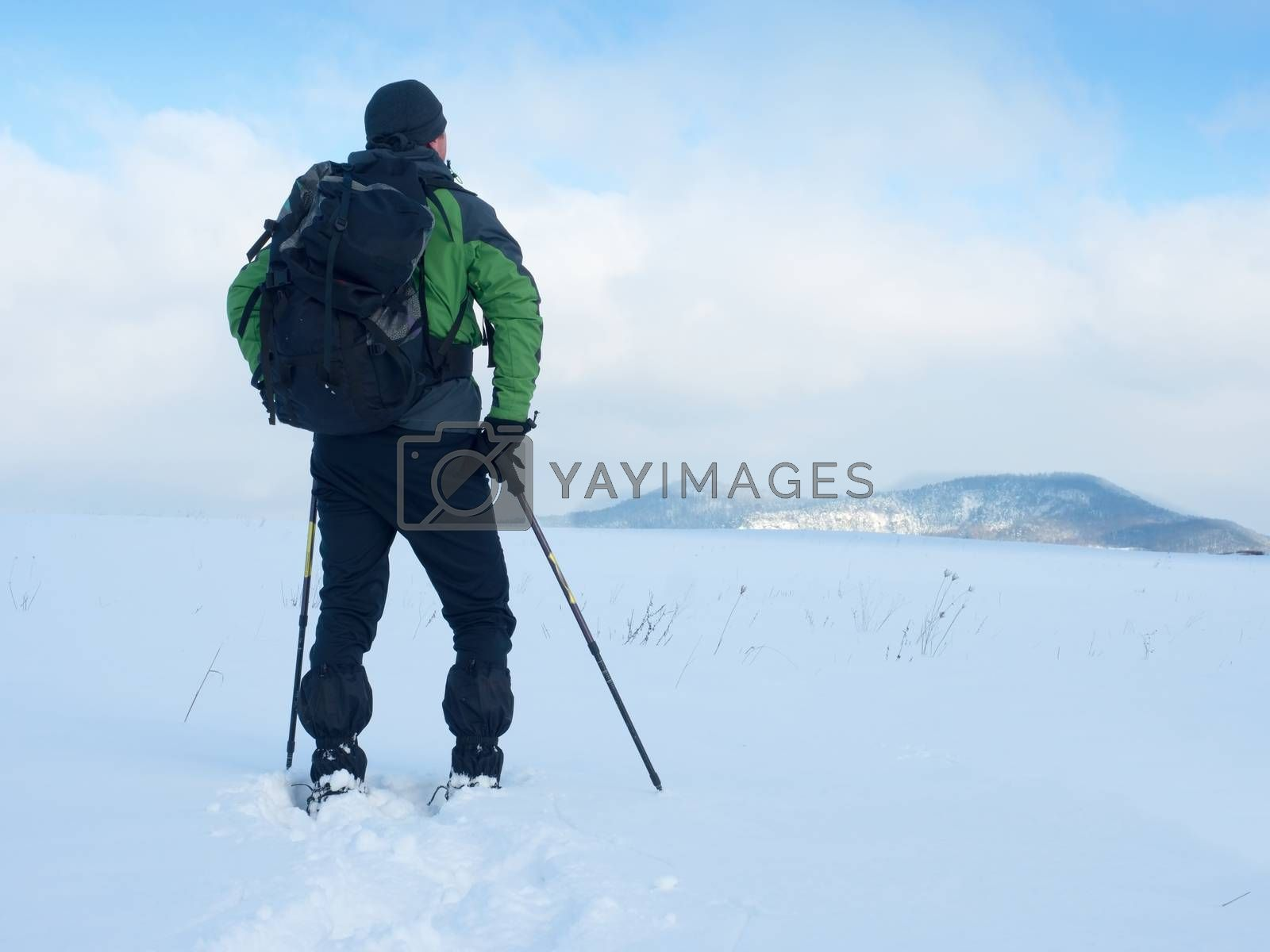 Man with snowshoes and backpack take a rest in snow. Hiker in winter jacket and trekking trousers snowshoeing in powder snow. Cloudy winter day, gentle wind brings small snow flakes