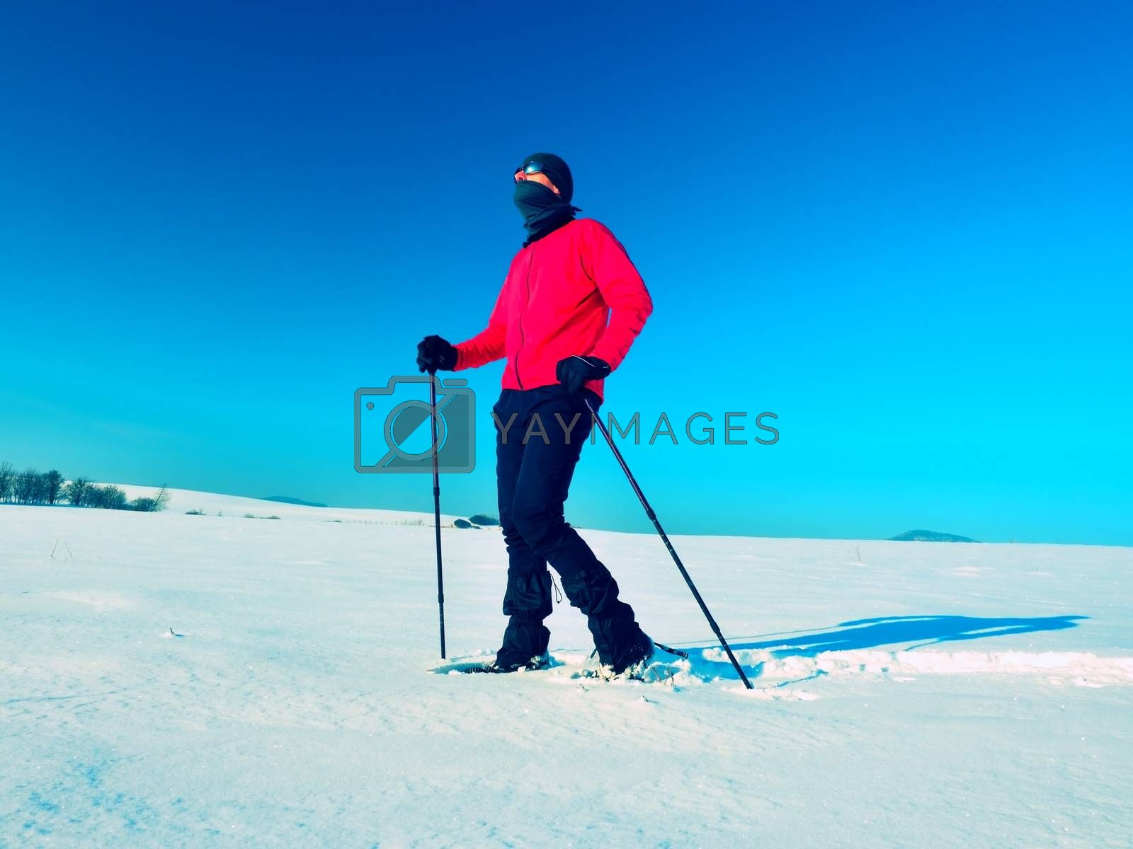 Tourist with snowshoes walk in snowy drift. Sunny freeze weather. Hiker in pink sports jacket and black trekking trousers snowshoeing in powder snow.