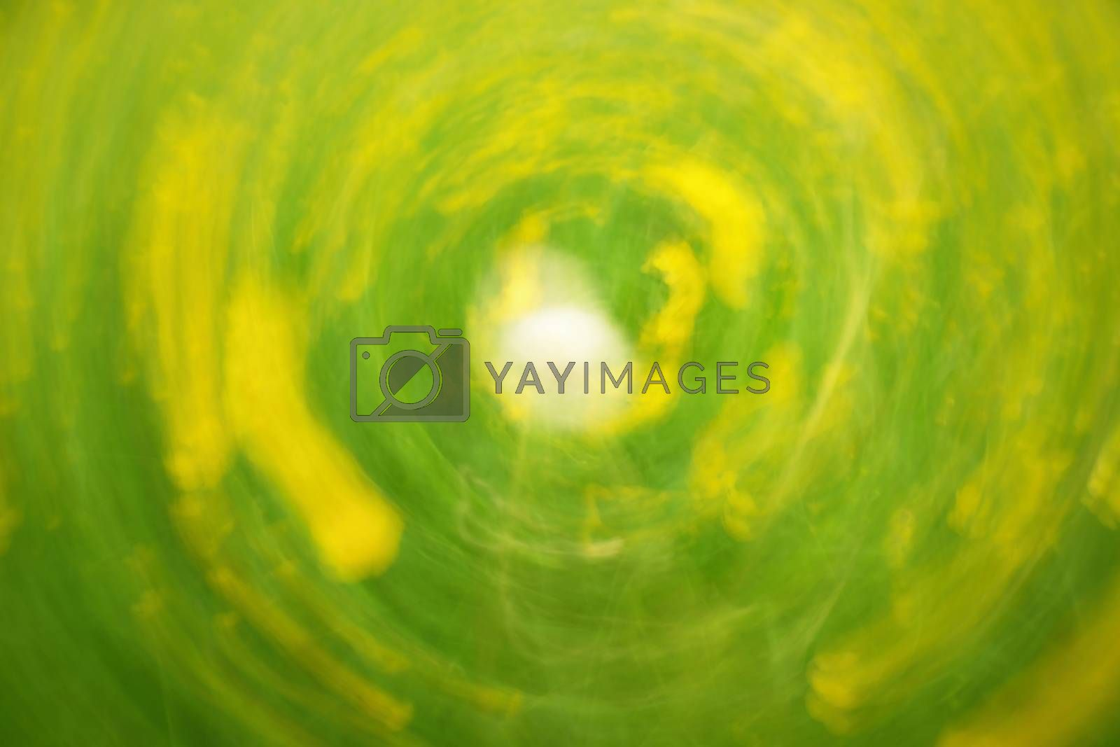 Defocused flowers and grass in circle background. Blurred and de focused yellow blossom and green grass stalks. Hypnotic blurry effect.